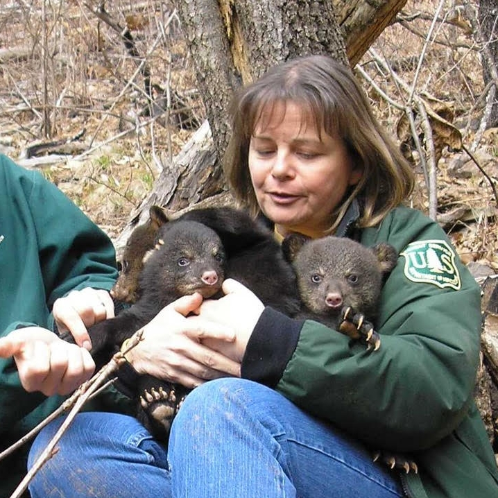 Even though Susan is a botanist, she sometimes helps with checking bears in the Ouachita National Forest.