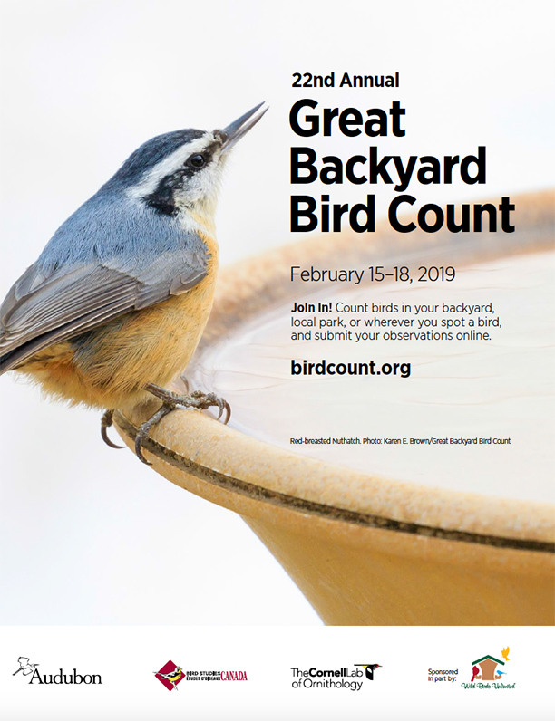 2019_Nuthatch_Poster_Full.jpg
