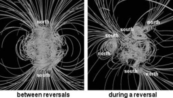 Magnetic Polar shift.jpg