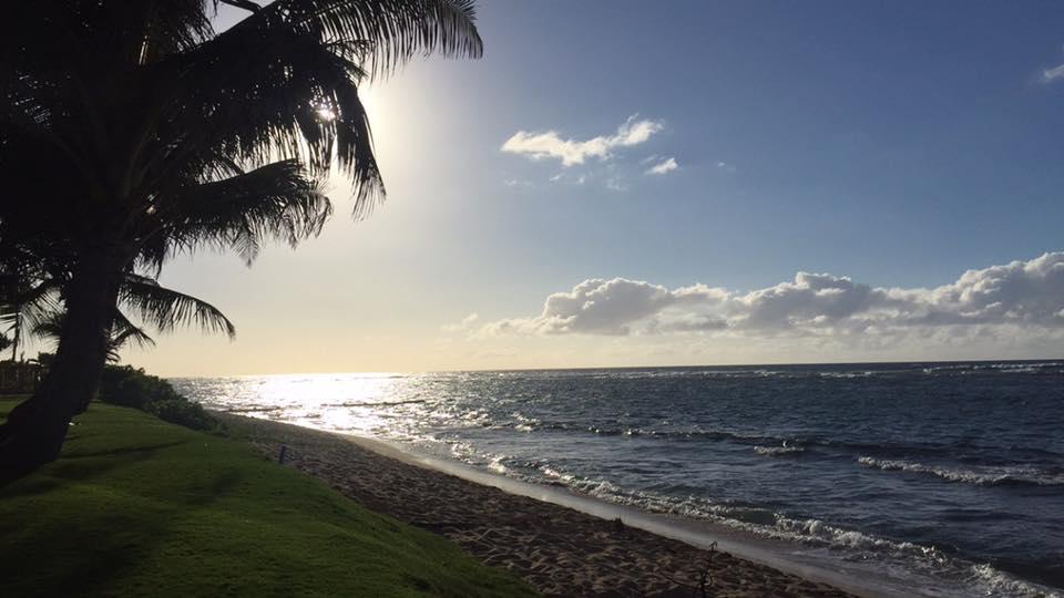 Haleiwa - North Shore