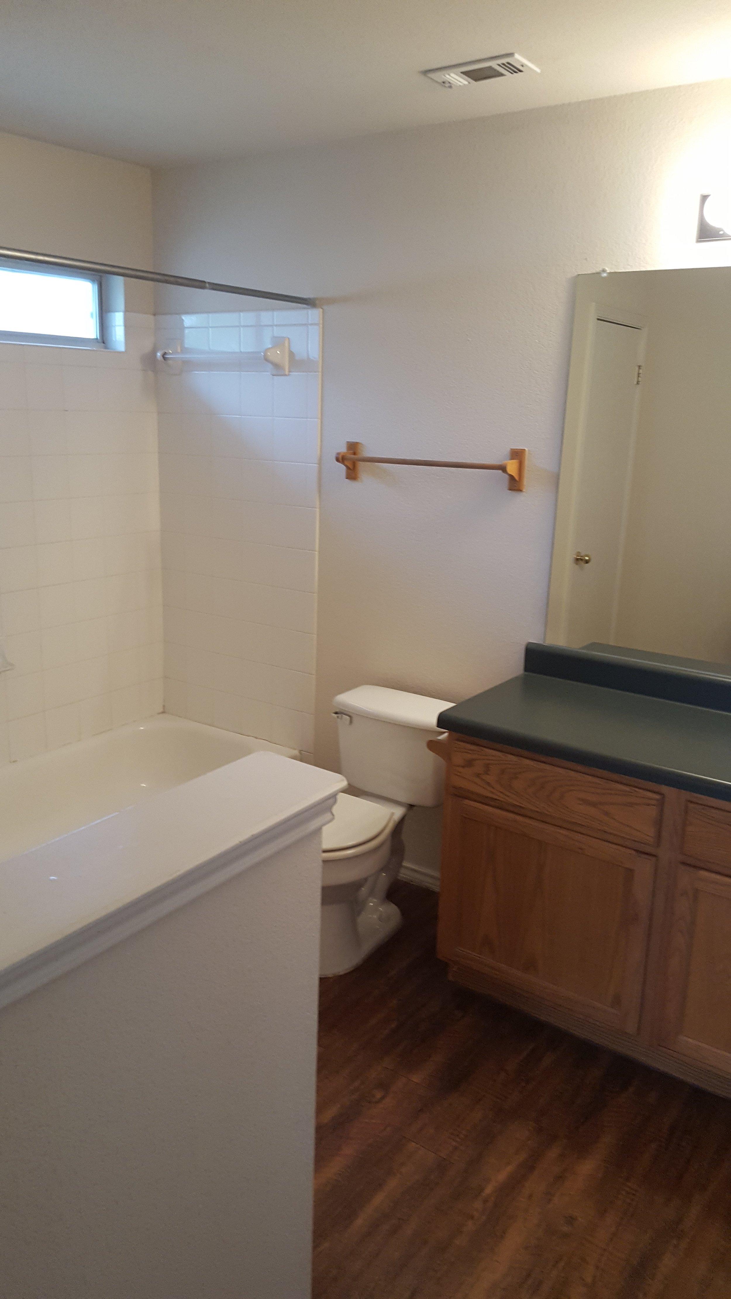 531 Britini Loop bathroom 2.jpg