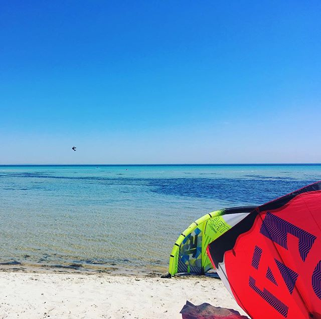 What's your style, beach bum or adventure junky? 🐳🌊🏝#australianbeaches #gobranchout #familyadventures #thingstodoinmelbourne