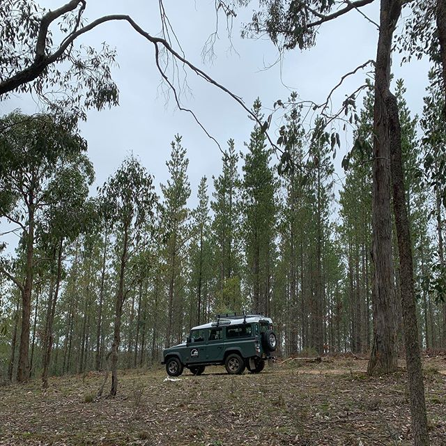 Setting up for our next group of customers (victims 🤣)...it's going to icy! 🥶😂🤘🏼. Wrap up competitors! . #forest #landrover #defender #defender110 #survivor #cold #teams #leaders #teambuilding #melbourne #australia #tvcameras