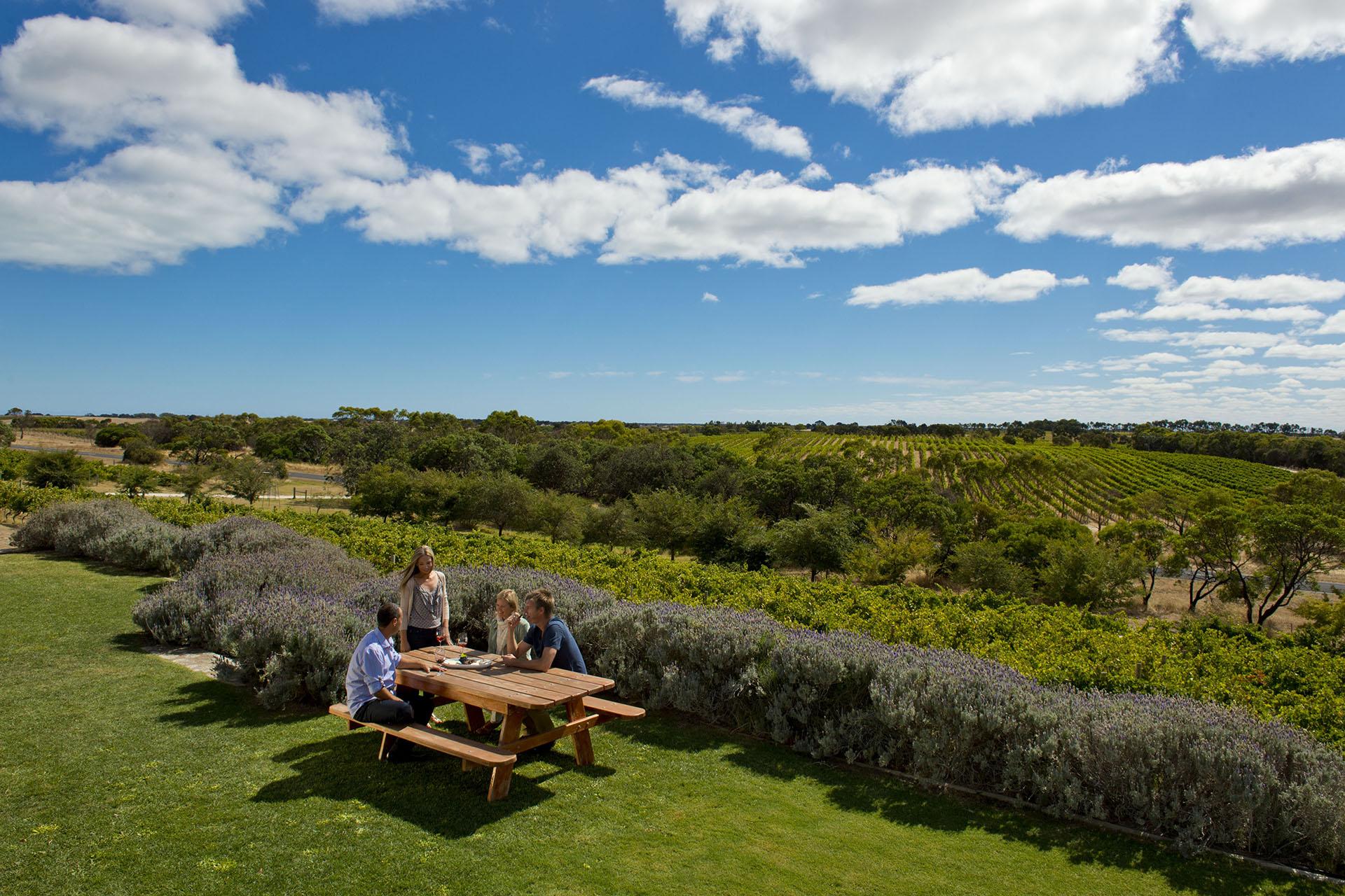 Mount Benson wine region of South Australia