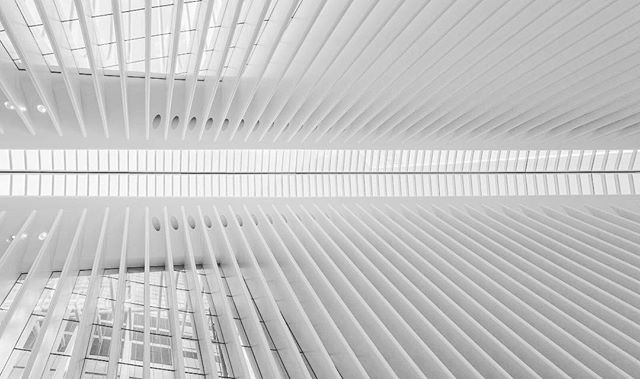Oculus @ WTC #oculus #minimalist #white #structure #architectureporn #highkey #calatrava #wtc #nyc
