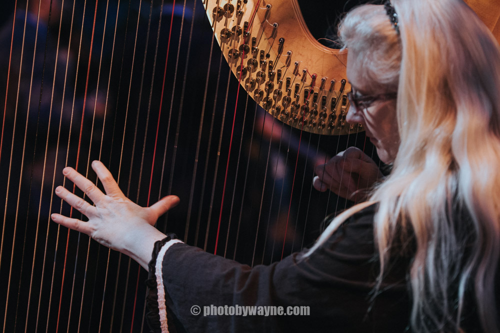 15-woman-playing-the-harp.jpg
