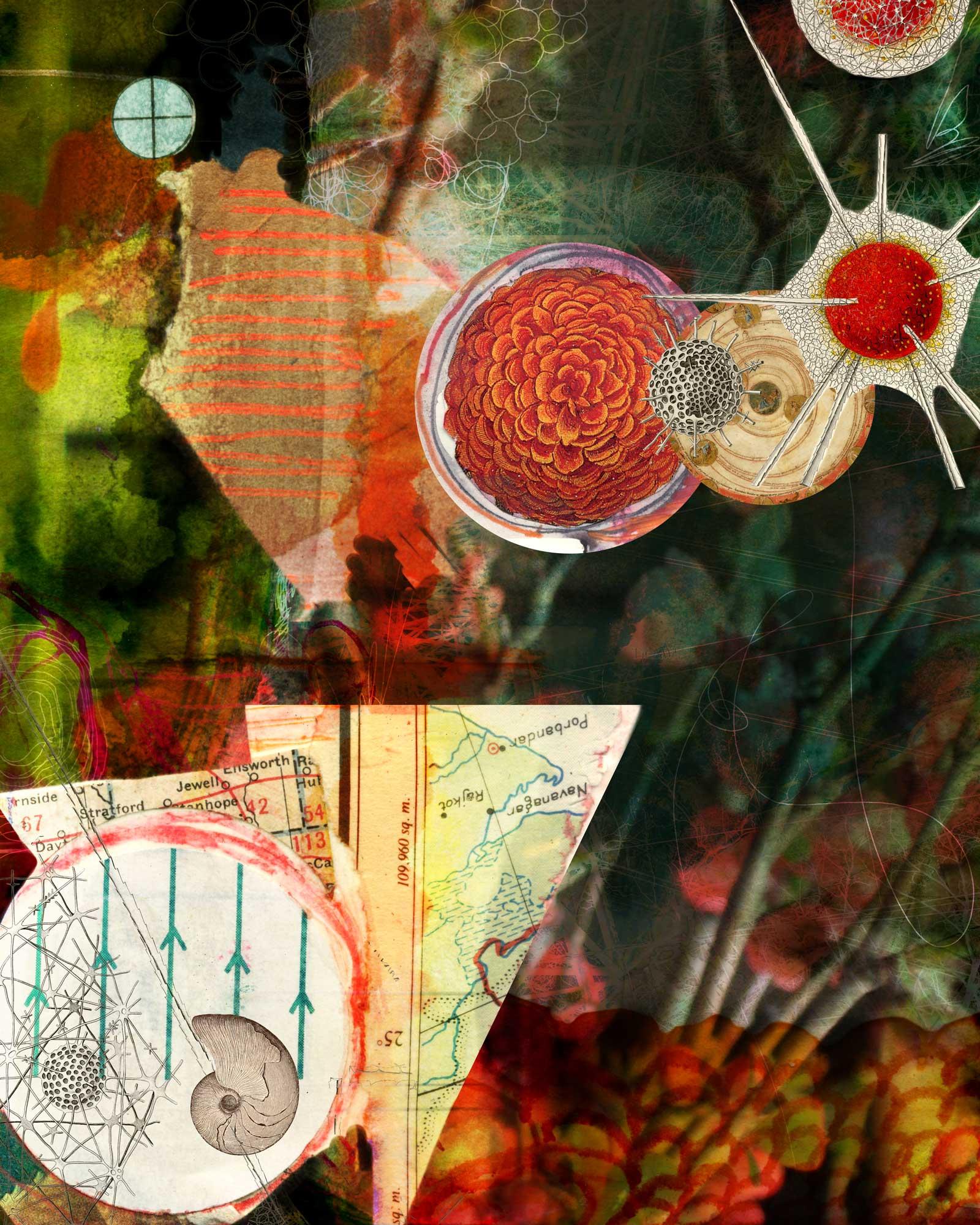 "Digital collage, 16"" x 20"", in progress."