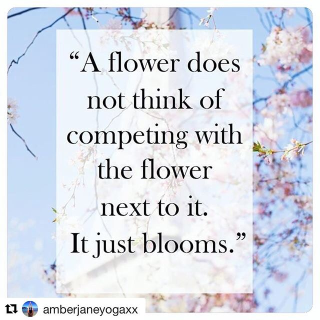 💙💙 I need to stop comparing my journey to others. We are all on different paths and while I may still be studying and living at home with my parents, it is where I need to be at this moment in my life and to be set up for the future. Thanks @amberjaneyogaxx for the reminder xx