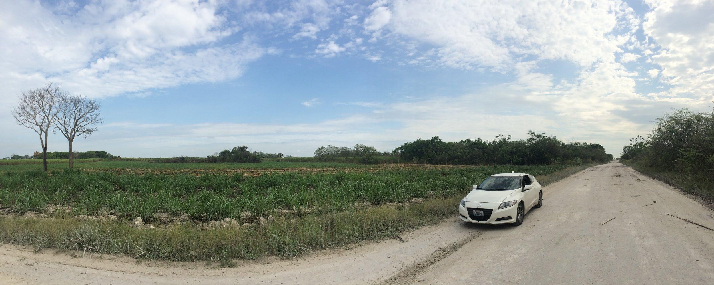 Belizean fields & silty roads