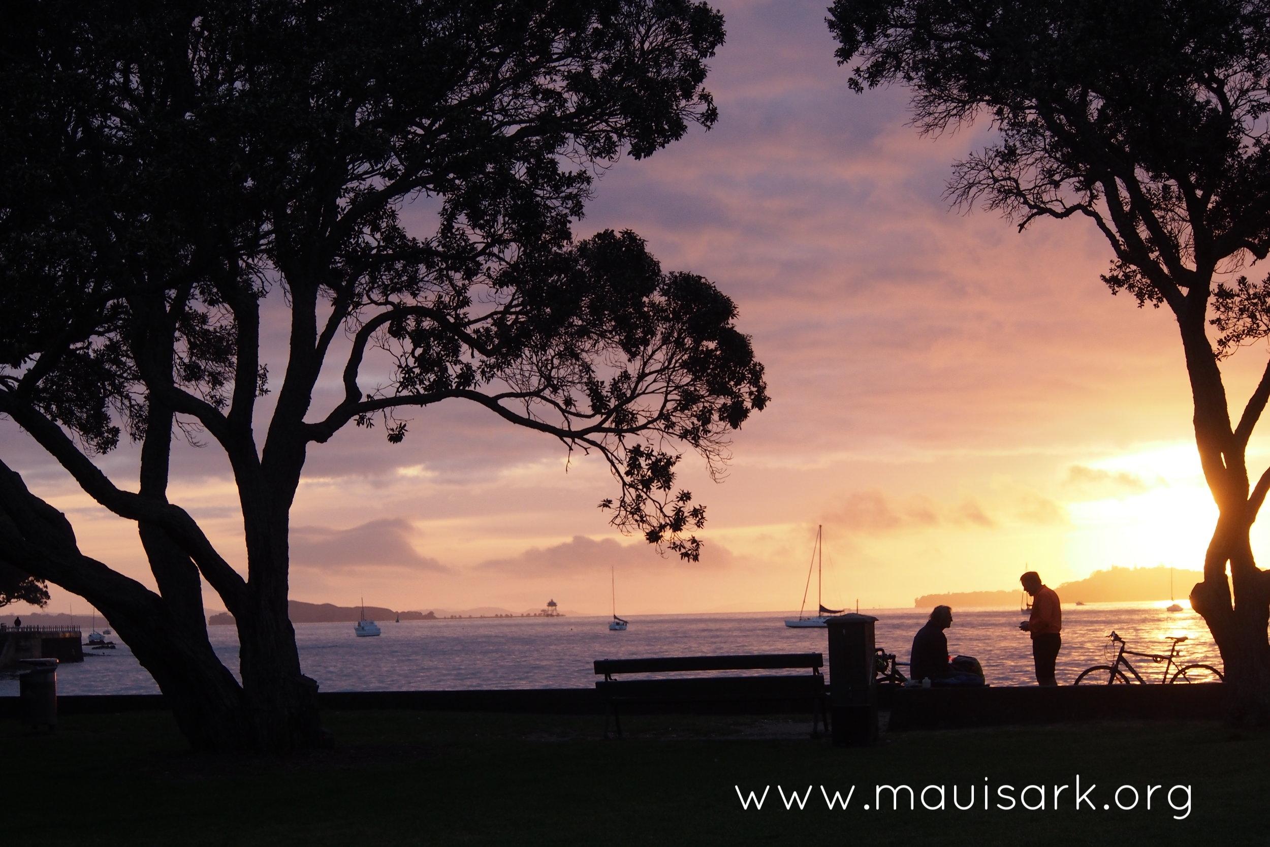 Sunrise Devonport Beach, Auckland