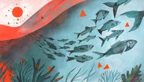 Fish migrate from warming waters. This effects not only their breeding patterns and distribution in the ocean, but also deprives the countries whose waters the fish leave from of food and from earning a living by catching them for export.