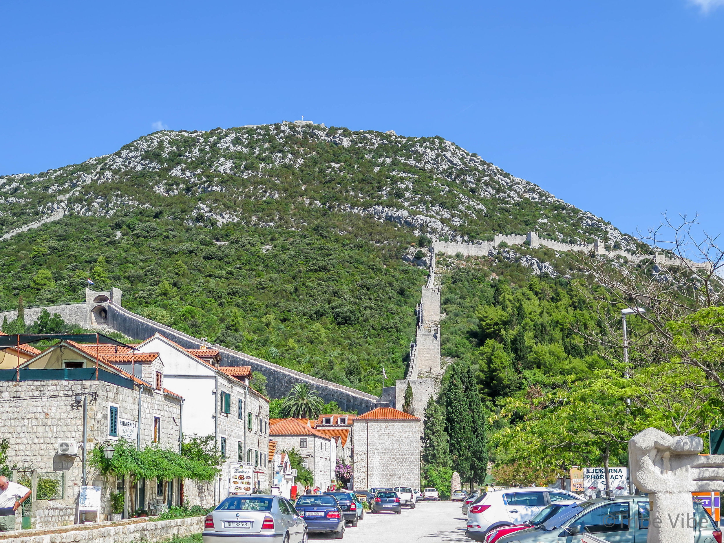 Croatia Road Trip. Day trips from Dubrovnik. Exploring Croatian vineyards.