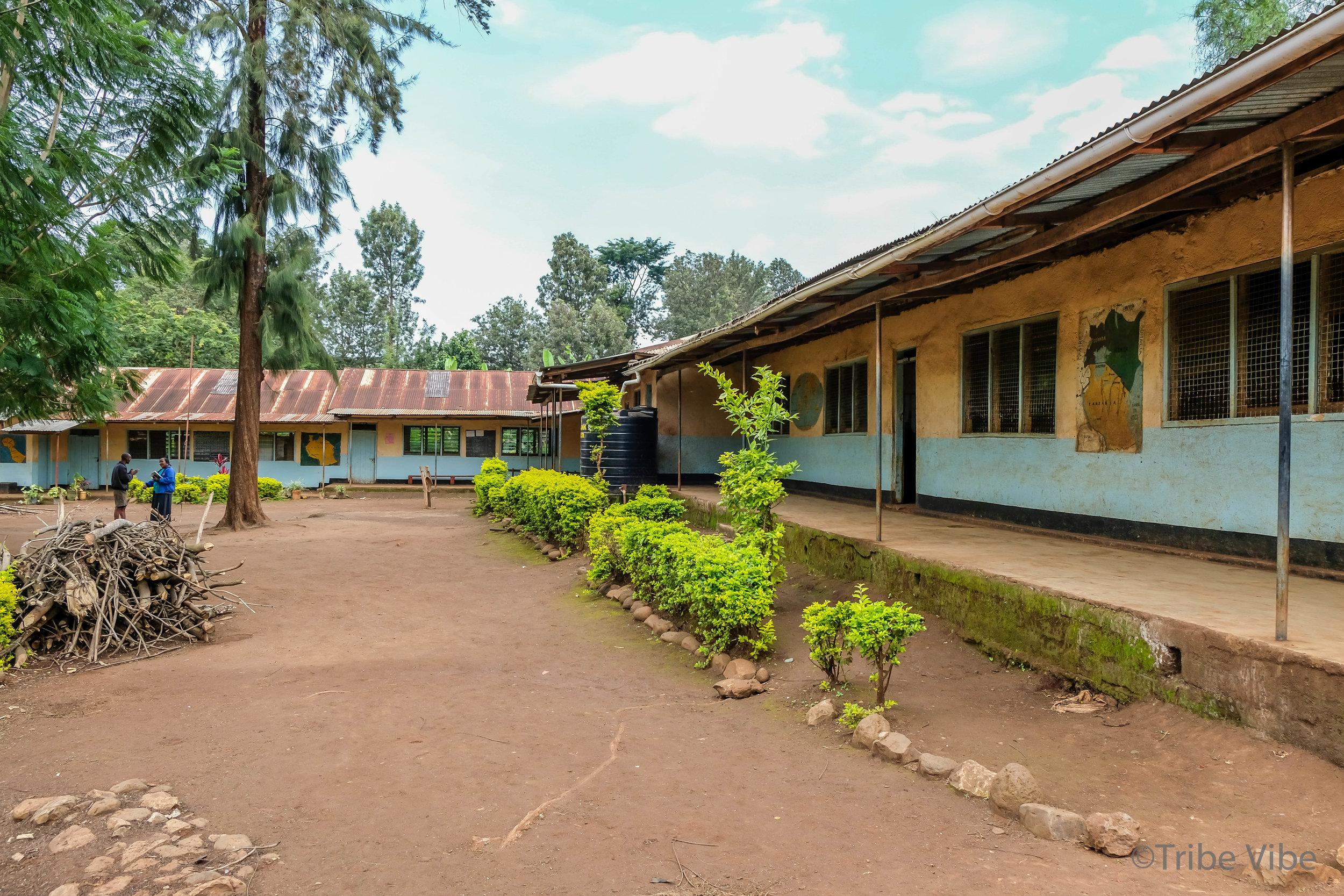 local Tanzanian school 7.jpg