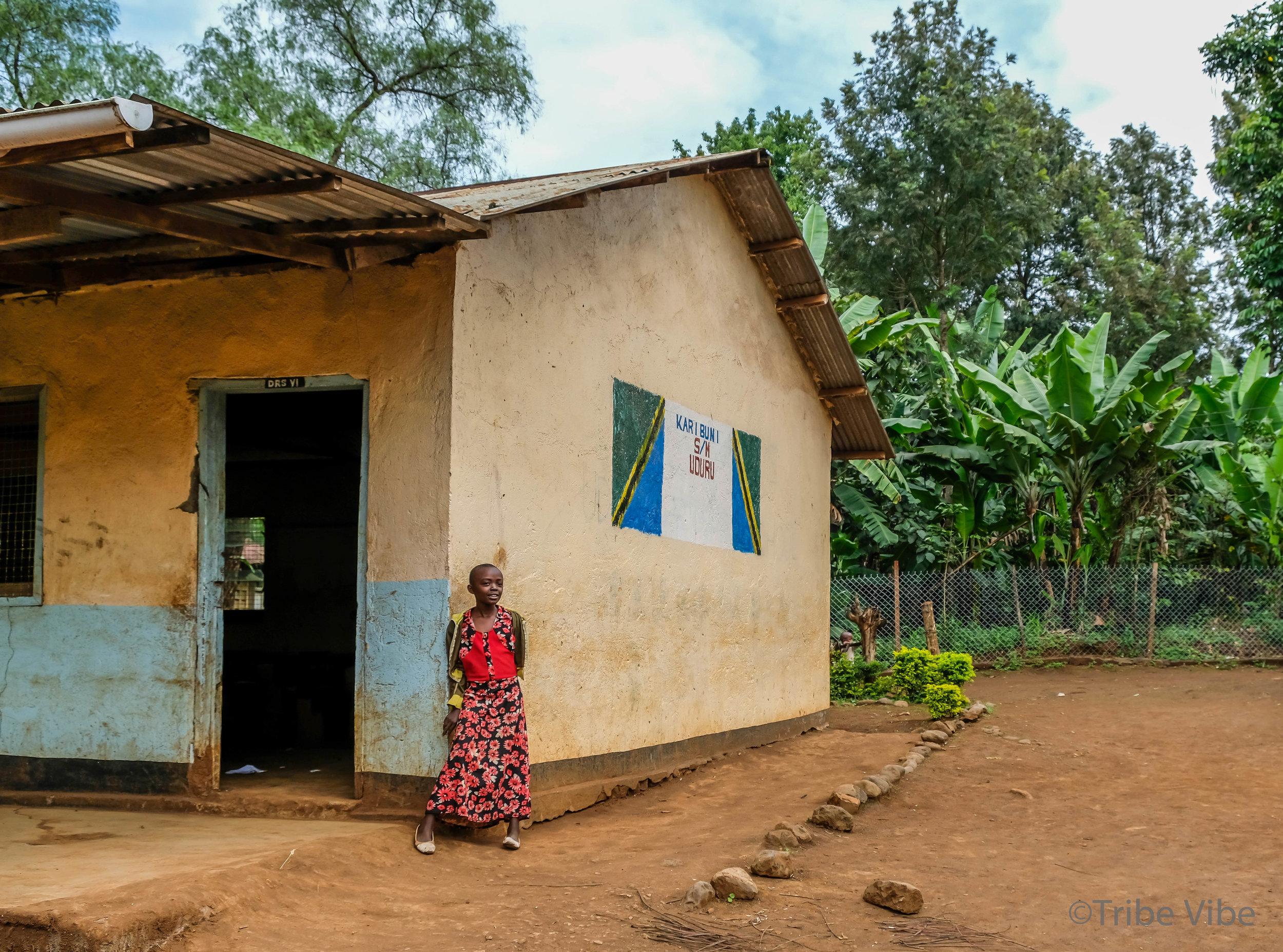 local Tanzanian school 9.jpg