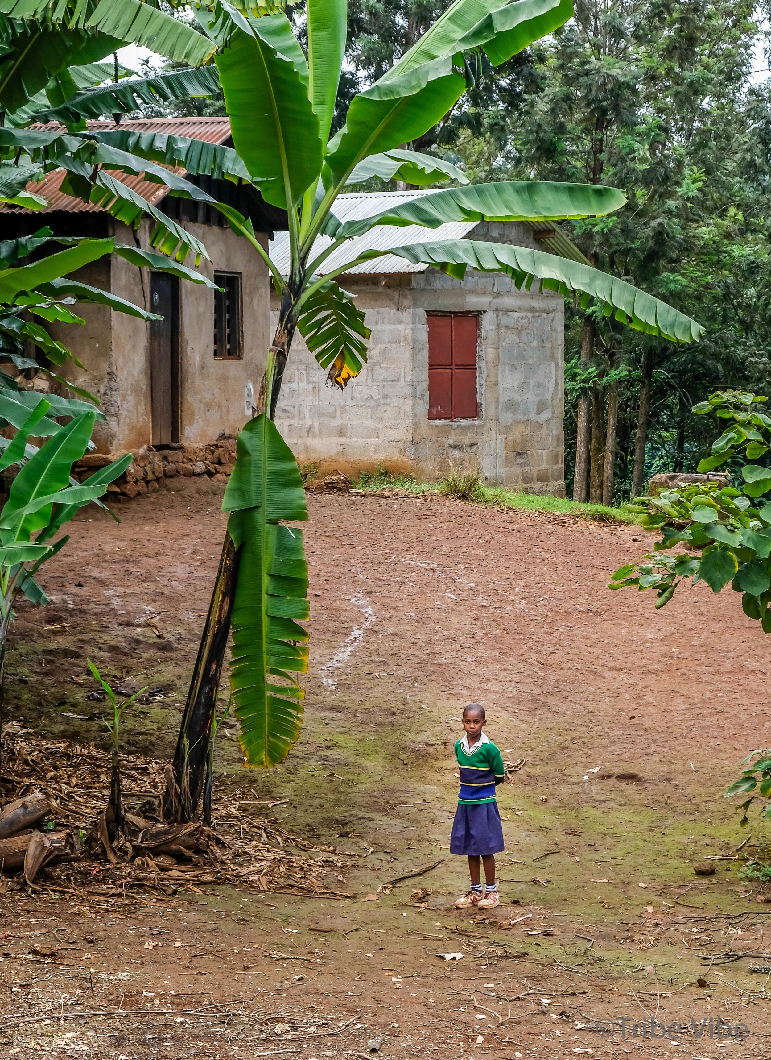 local Tanzanian school.jpg