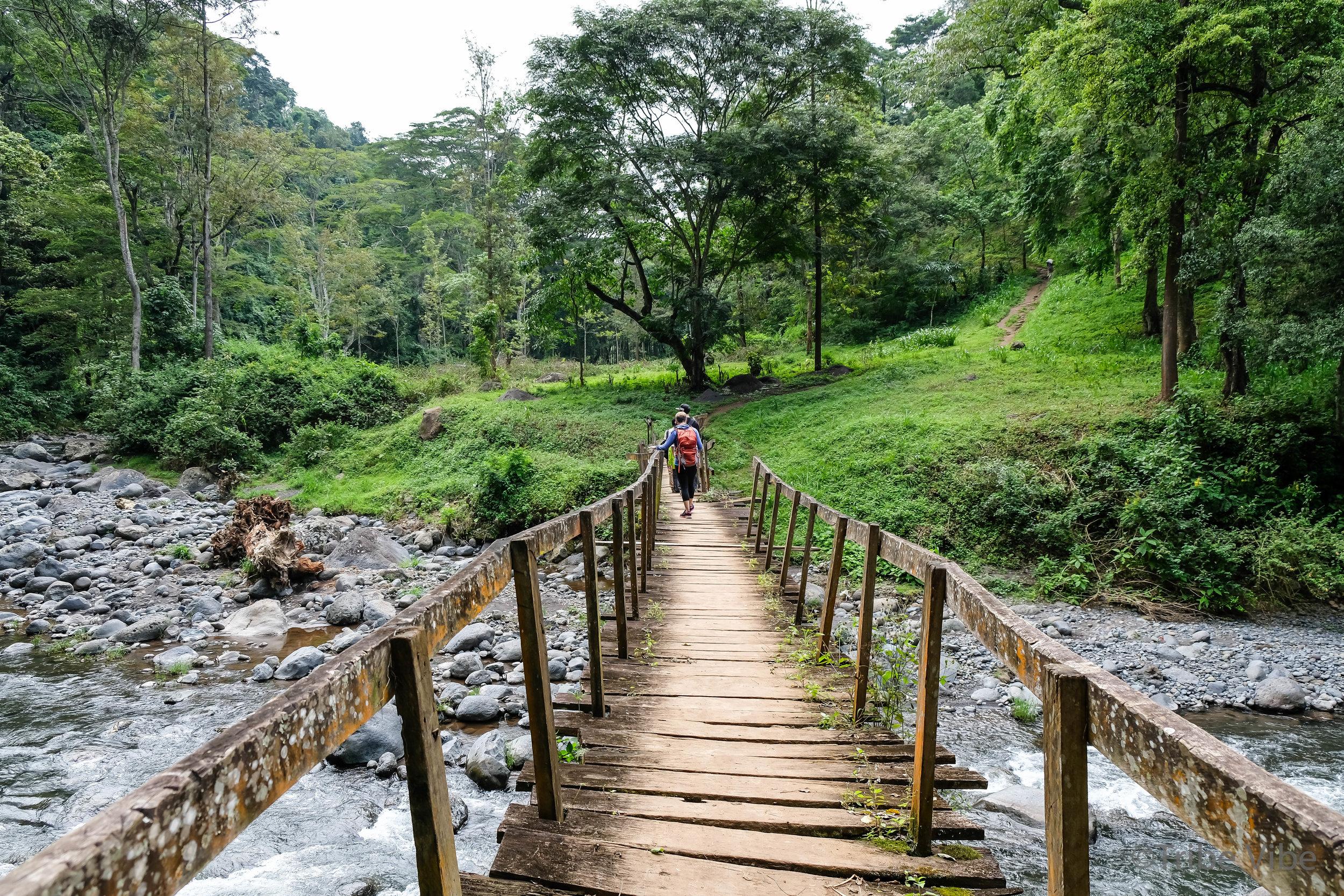 Machame walking trail to the bridge 4, Kilimanjaro.jpg