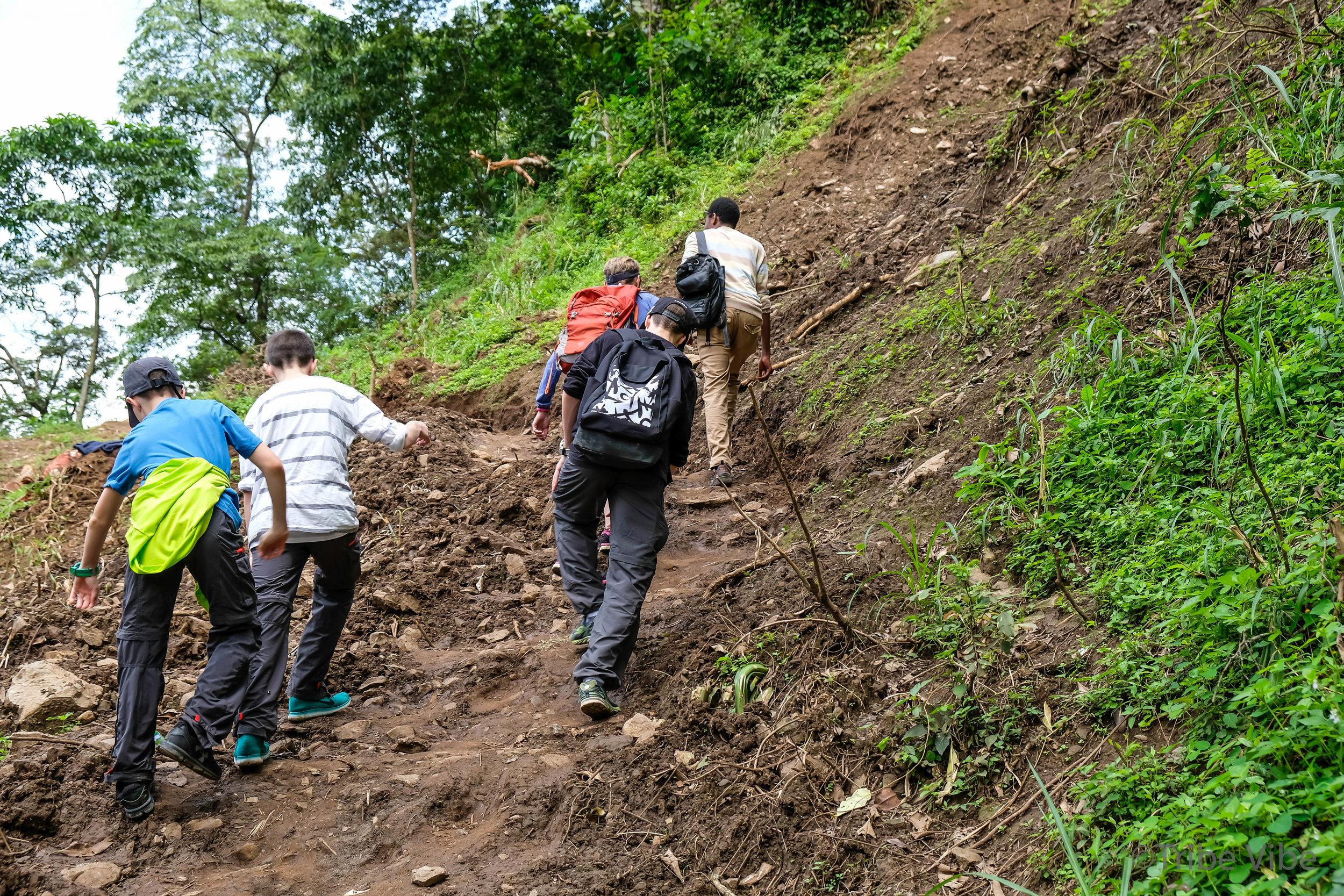 Machame walking trail to the bridge 8, Kilimanjaro.jpg
