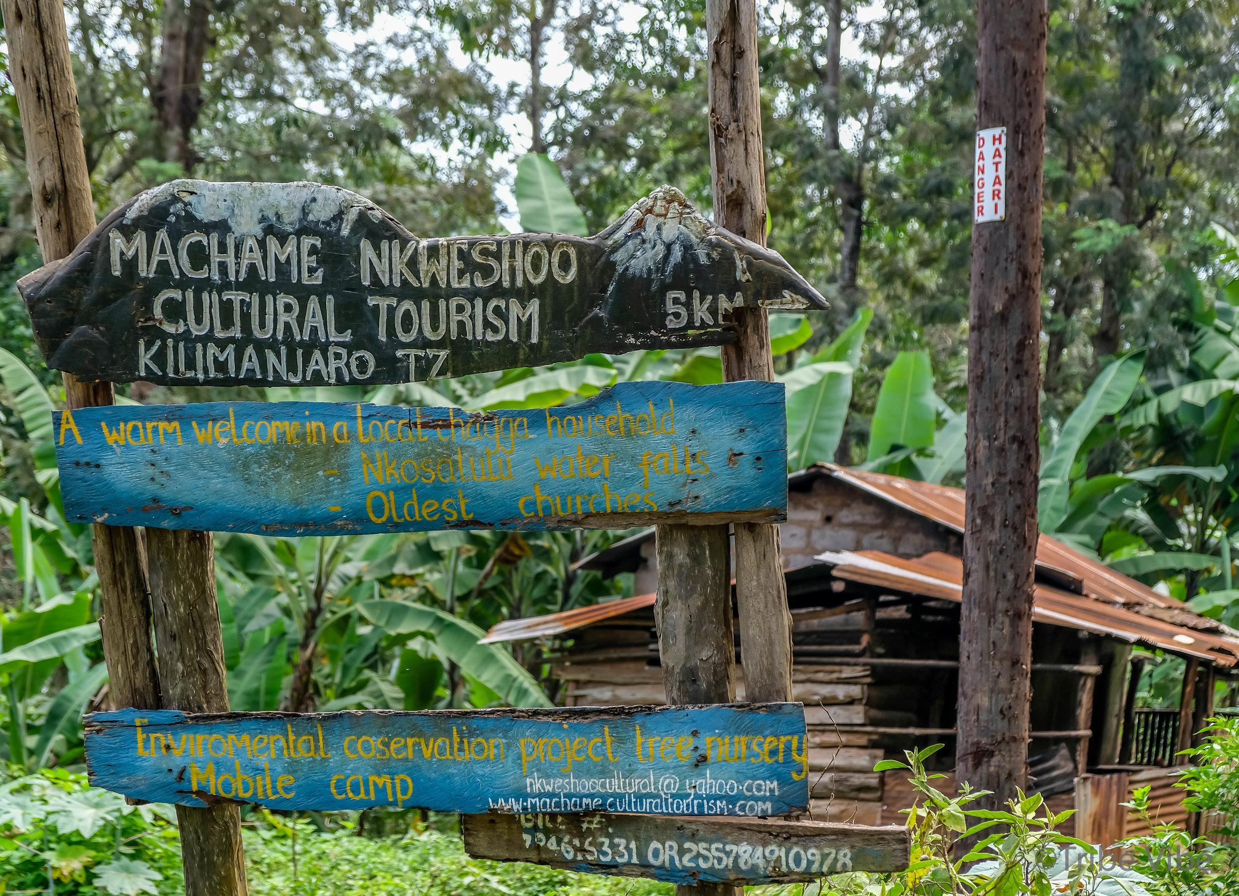 walk through town, Kilimanjaro 2.jpg