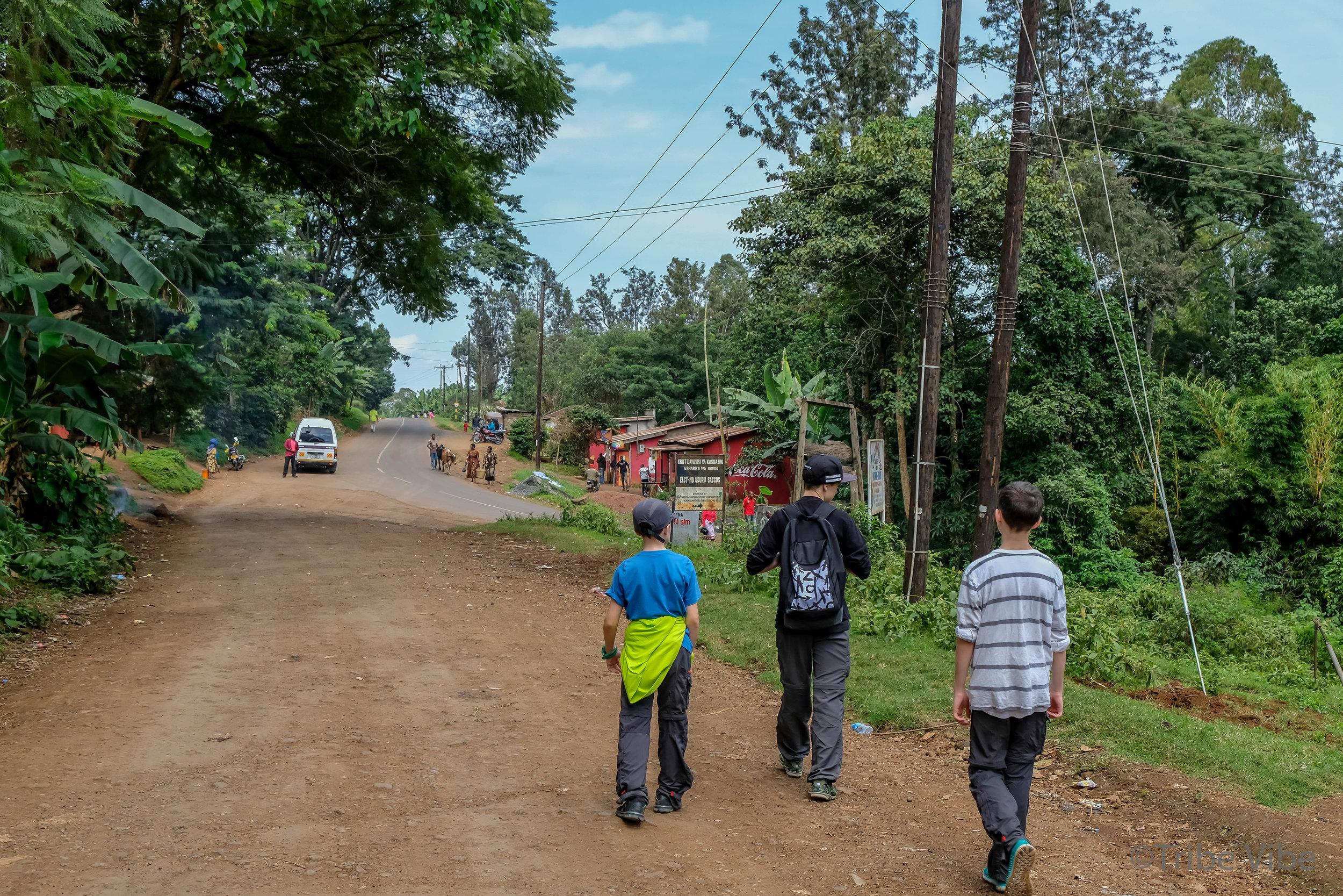 walk through town, Kilimanjaro 4.jpg