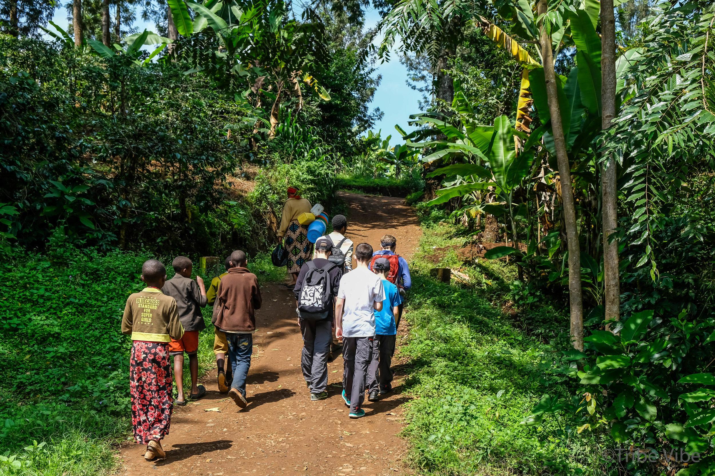 walking to waterfall, kilimanjaro.jpg