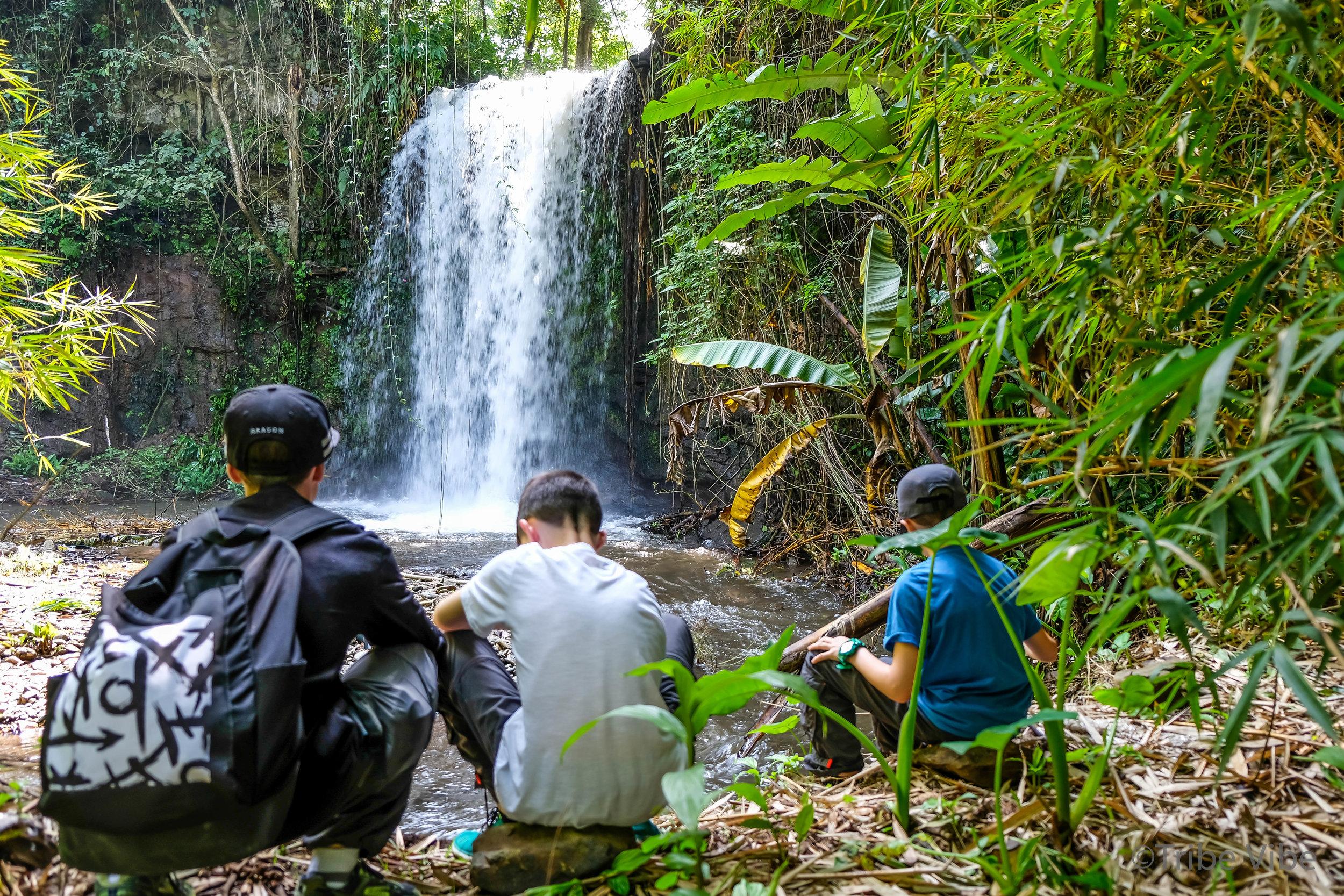 walking to waterfall, kilimanjaro 4.jpg