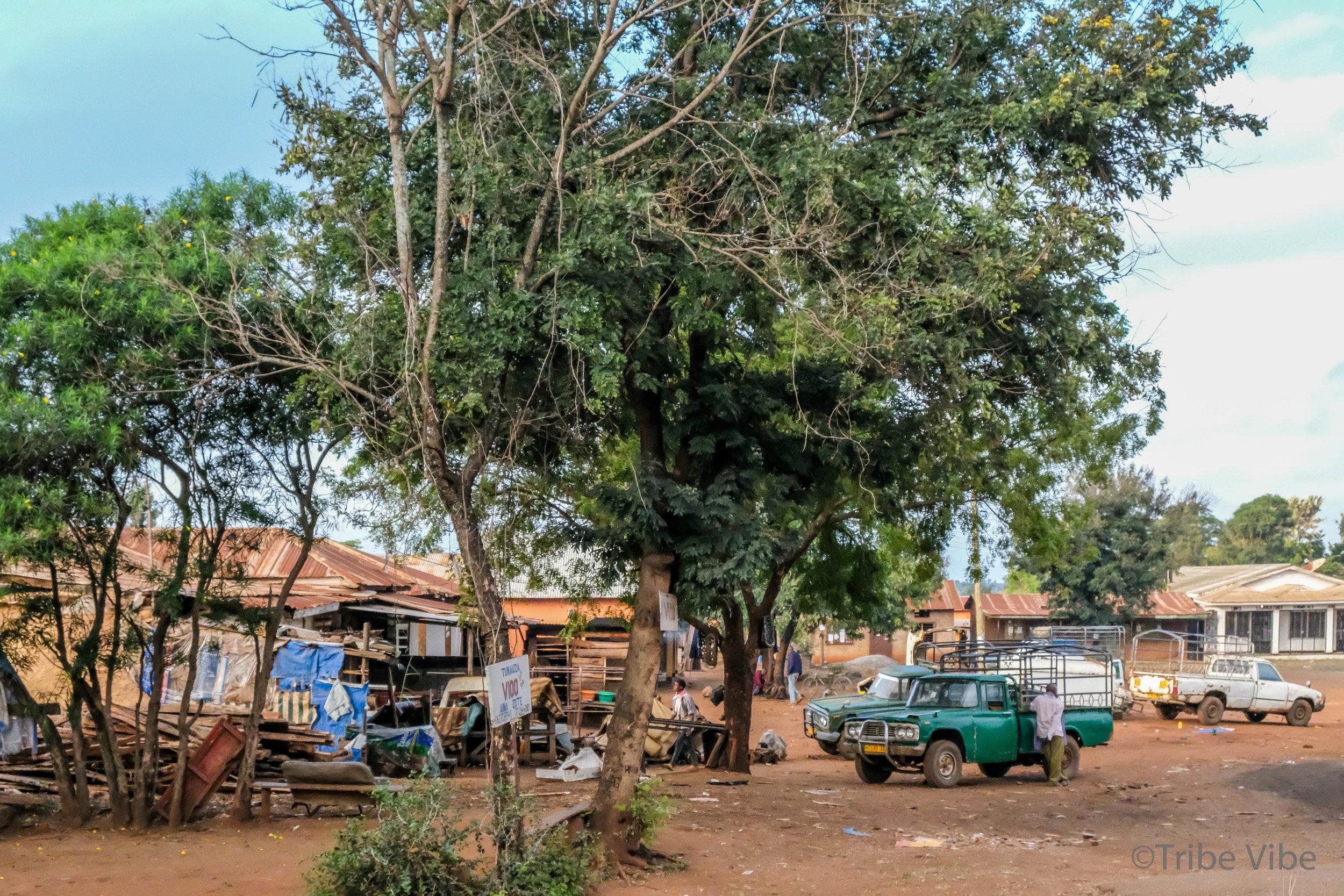 drive around Moshi, Kilimanjaro 3.jpg