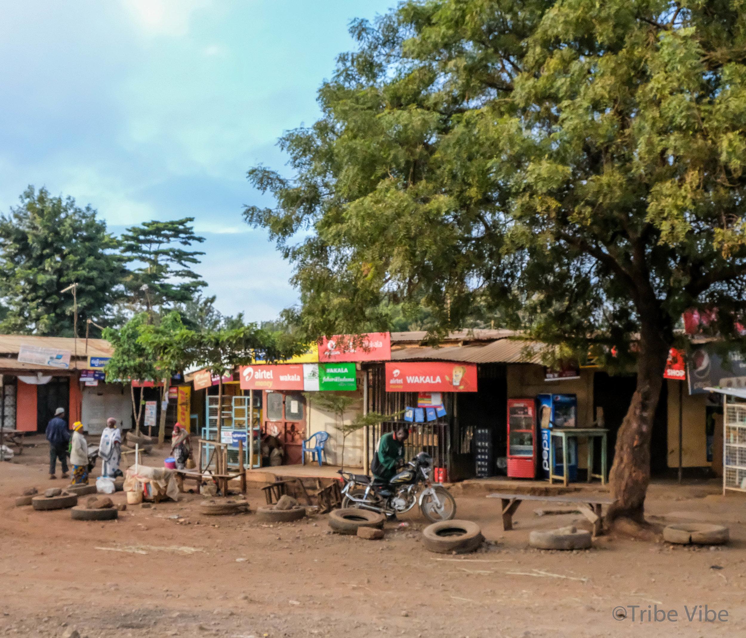 drive around Moshi, Kilimanjaro 5.jpg