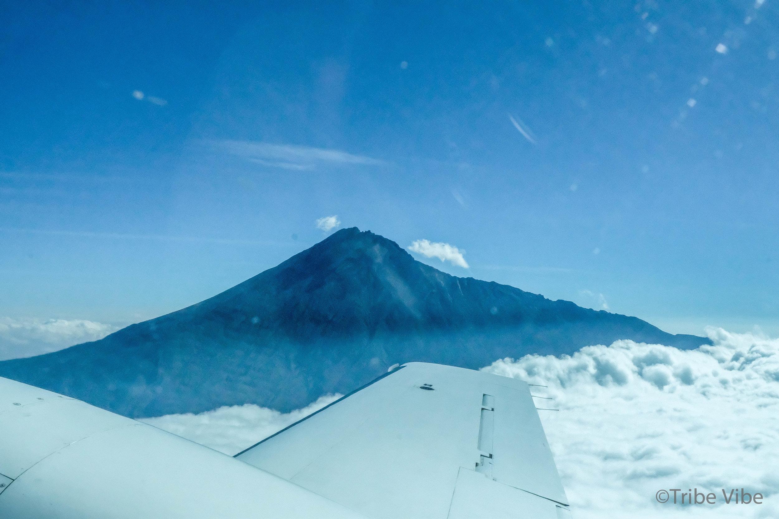 flight to serengeti 7.jpg