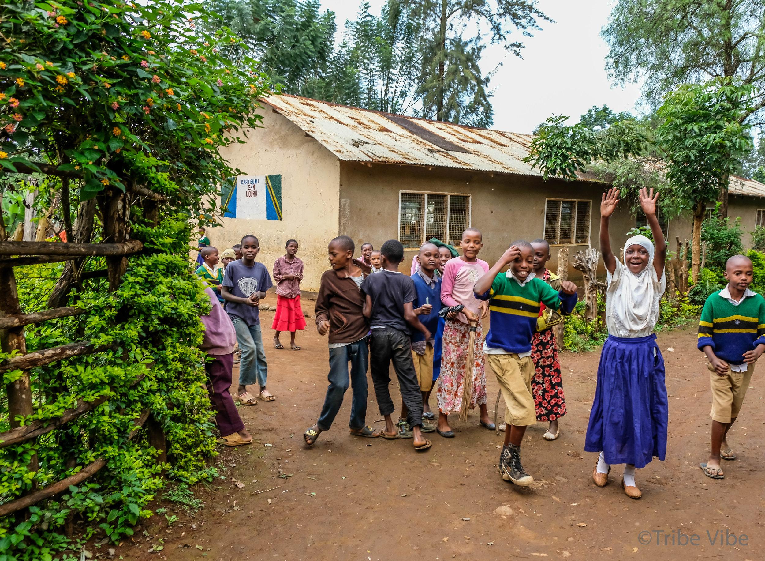 local Tanzanian school 18.jpg