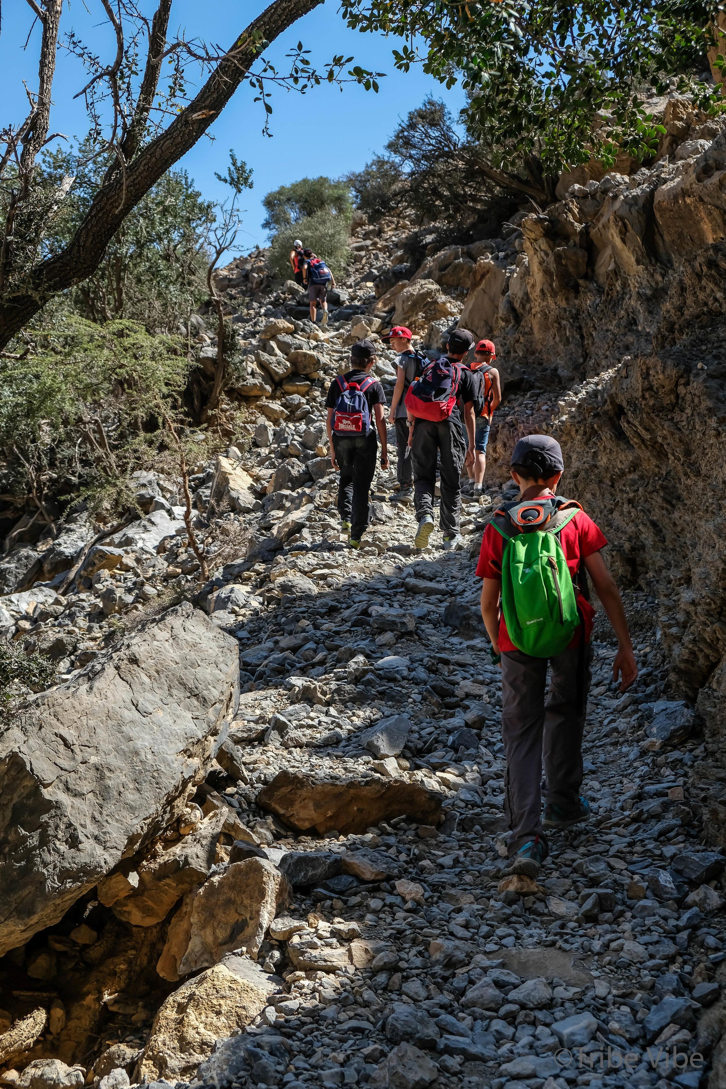 hike61.jpg