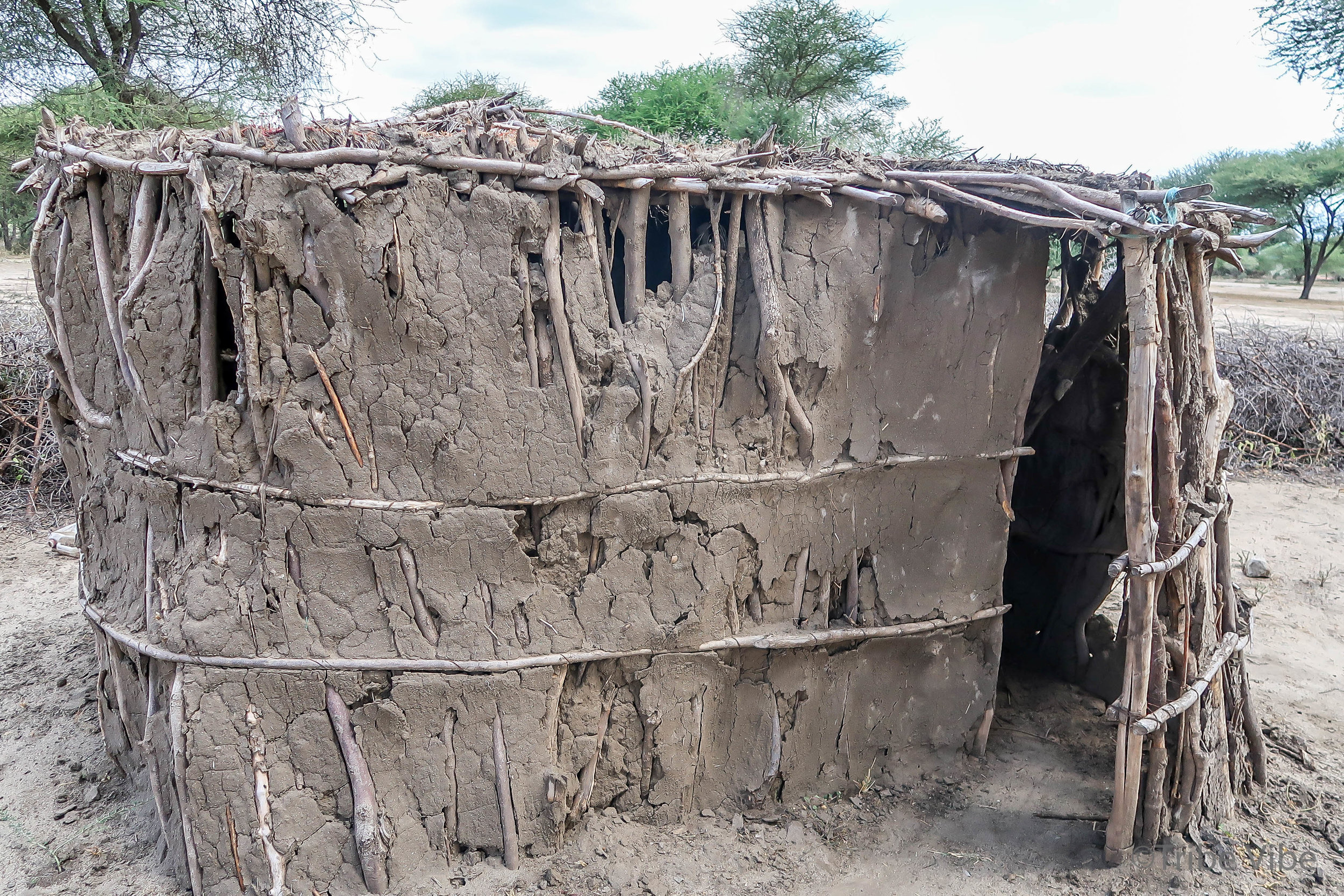Masai94.jpg