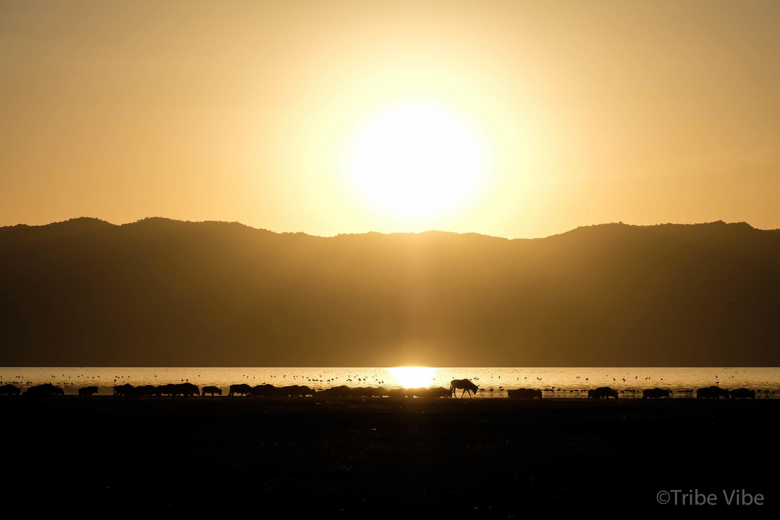 Lake Manayara sunset4.jpg