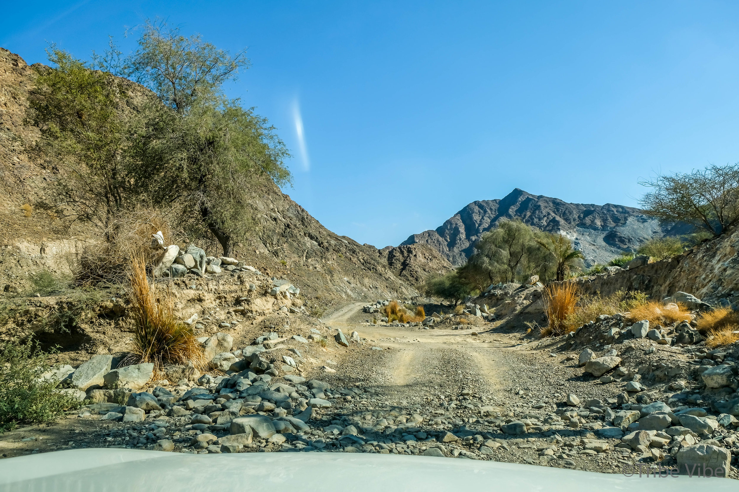 The wadi driving only lasted a few kilometres before we decided to get out and start our hike