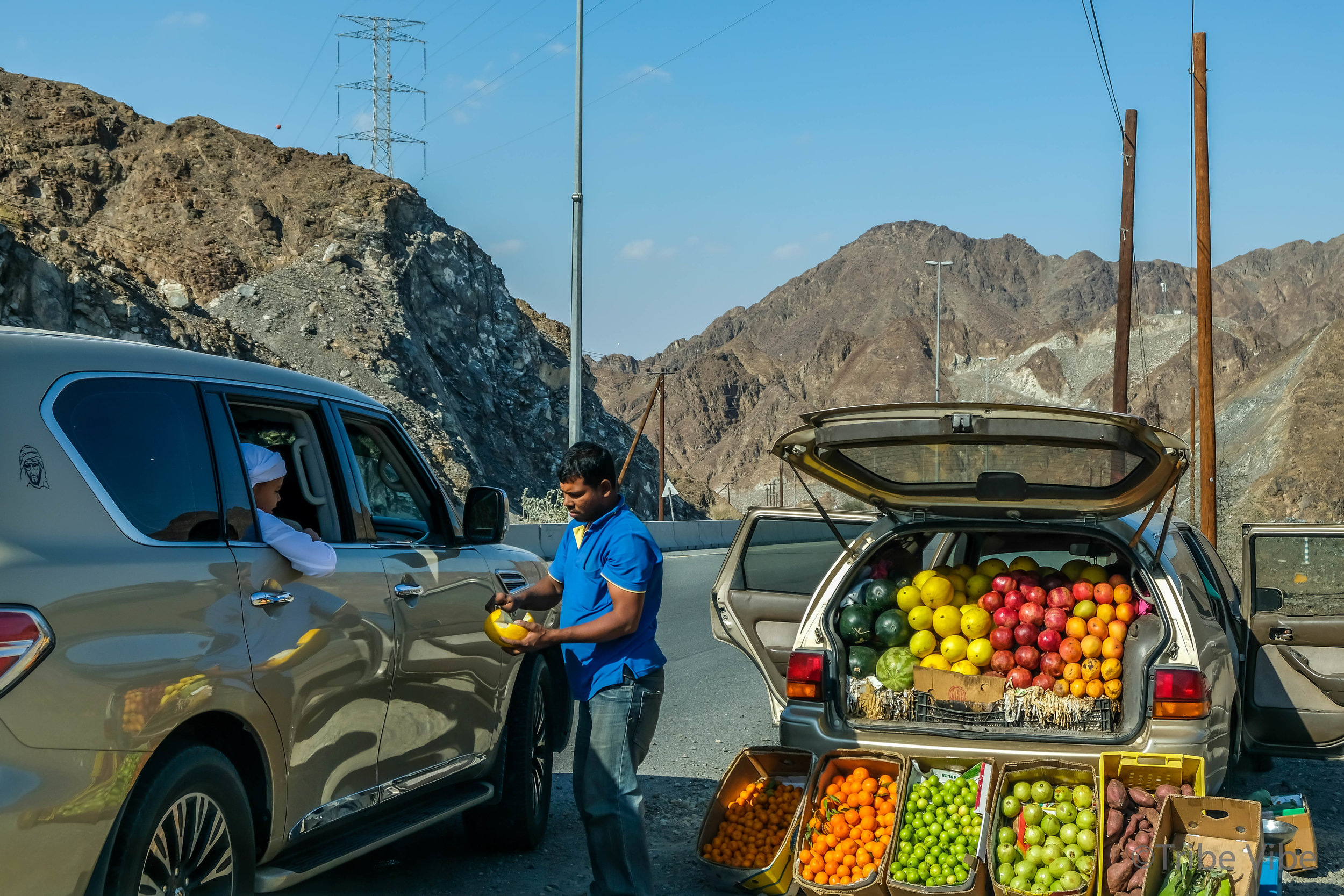 3 roadside fruit.jpg