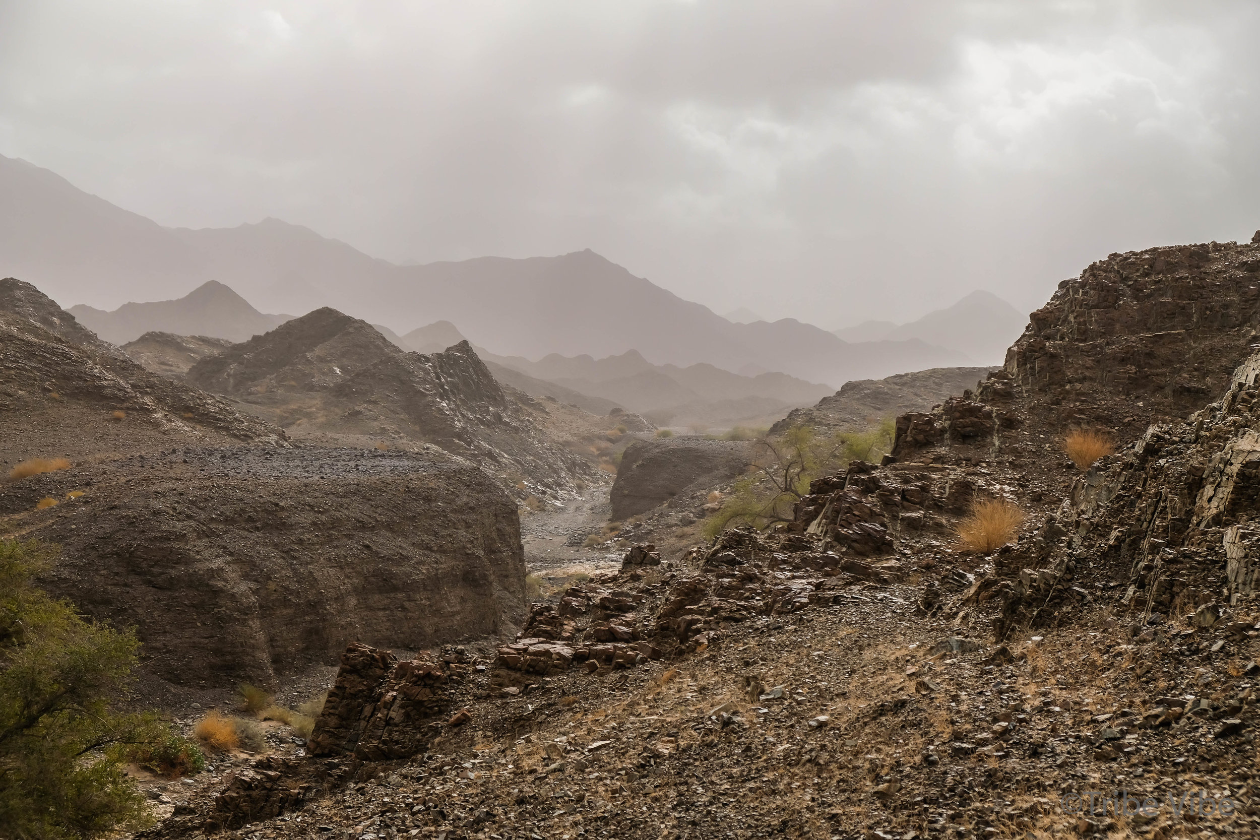 walking in the wadi of the camel farm hike in UAE1.jpg