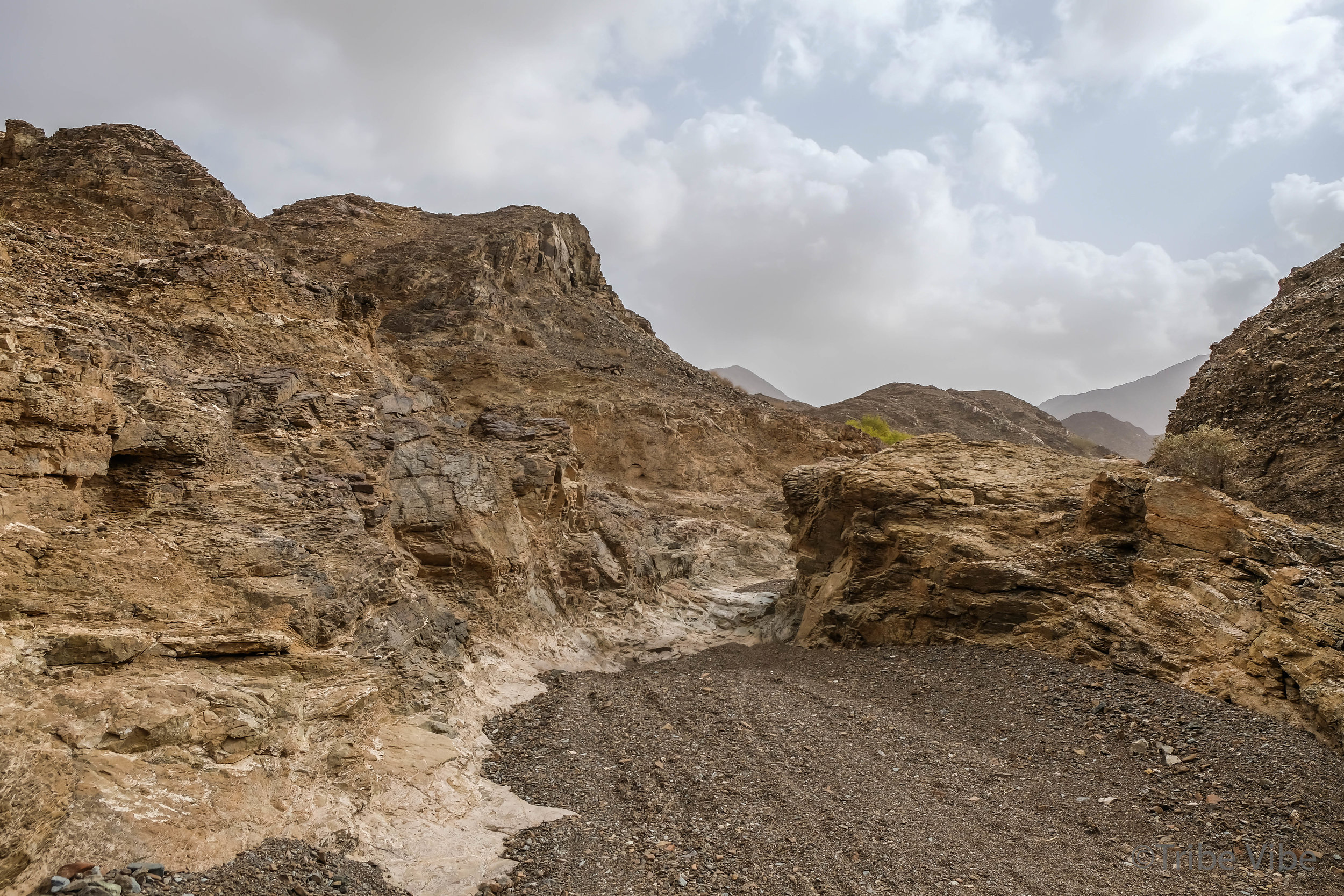 walking in the wadi of the camel farm hike in UAE7.jpg