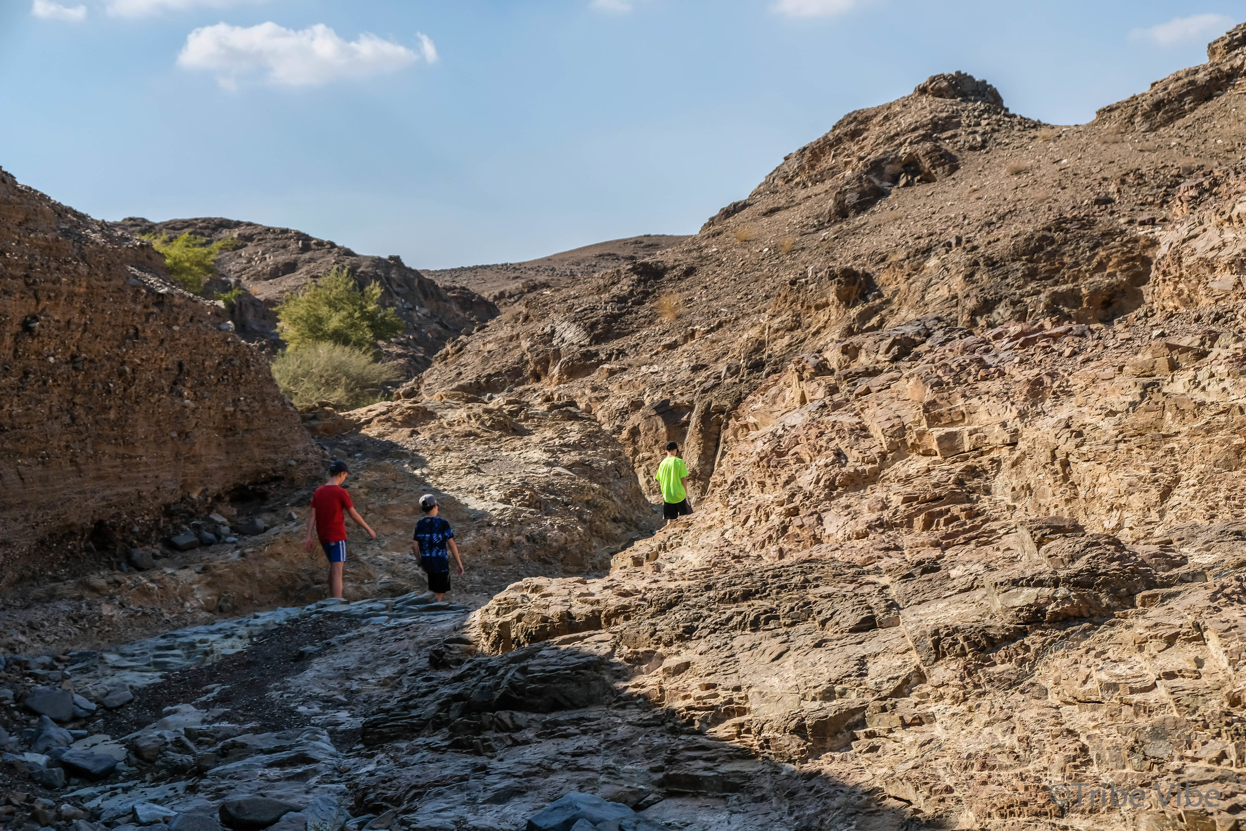Walking the wadi