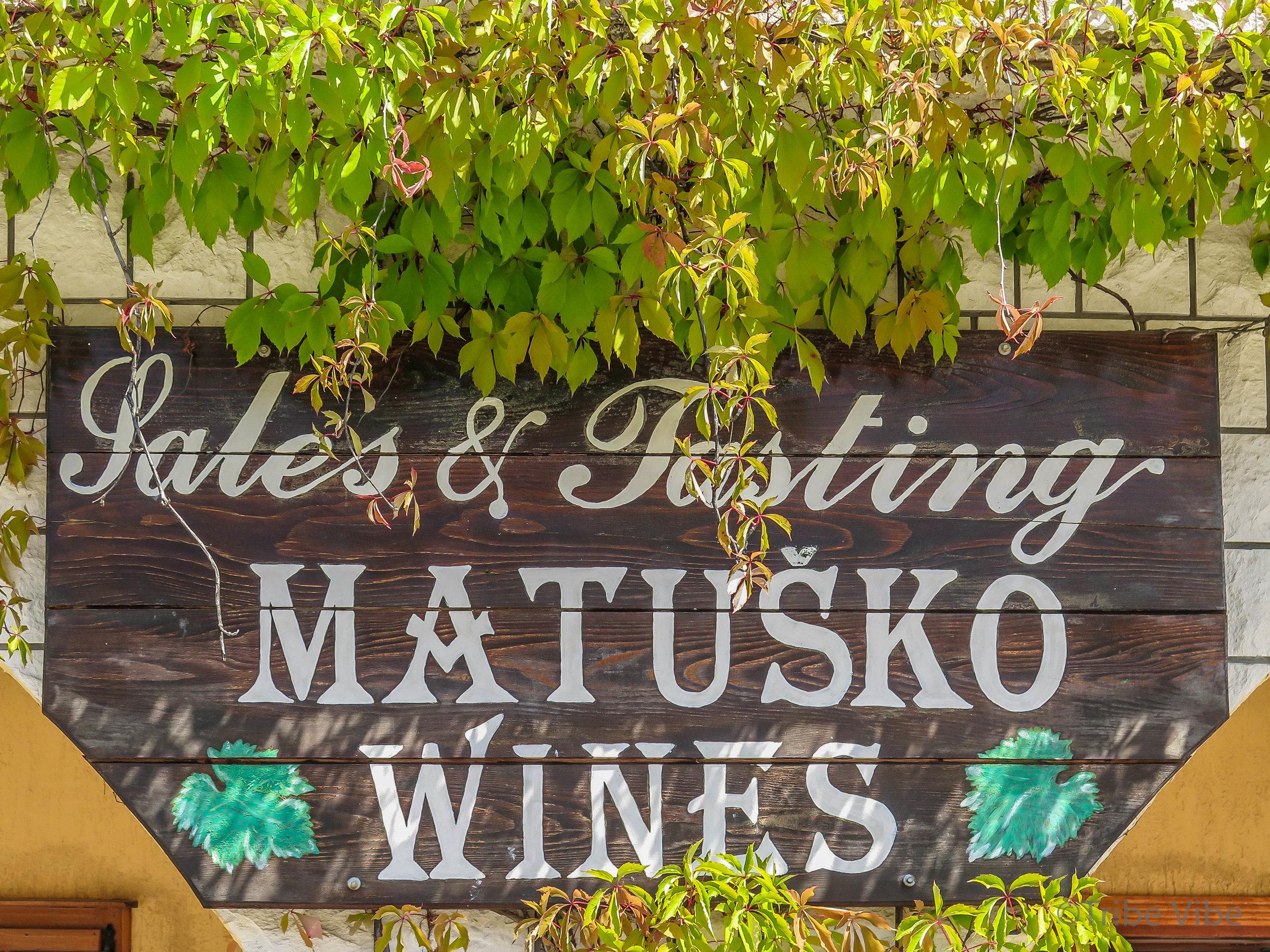 Croatian vineyards8.jpg
