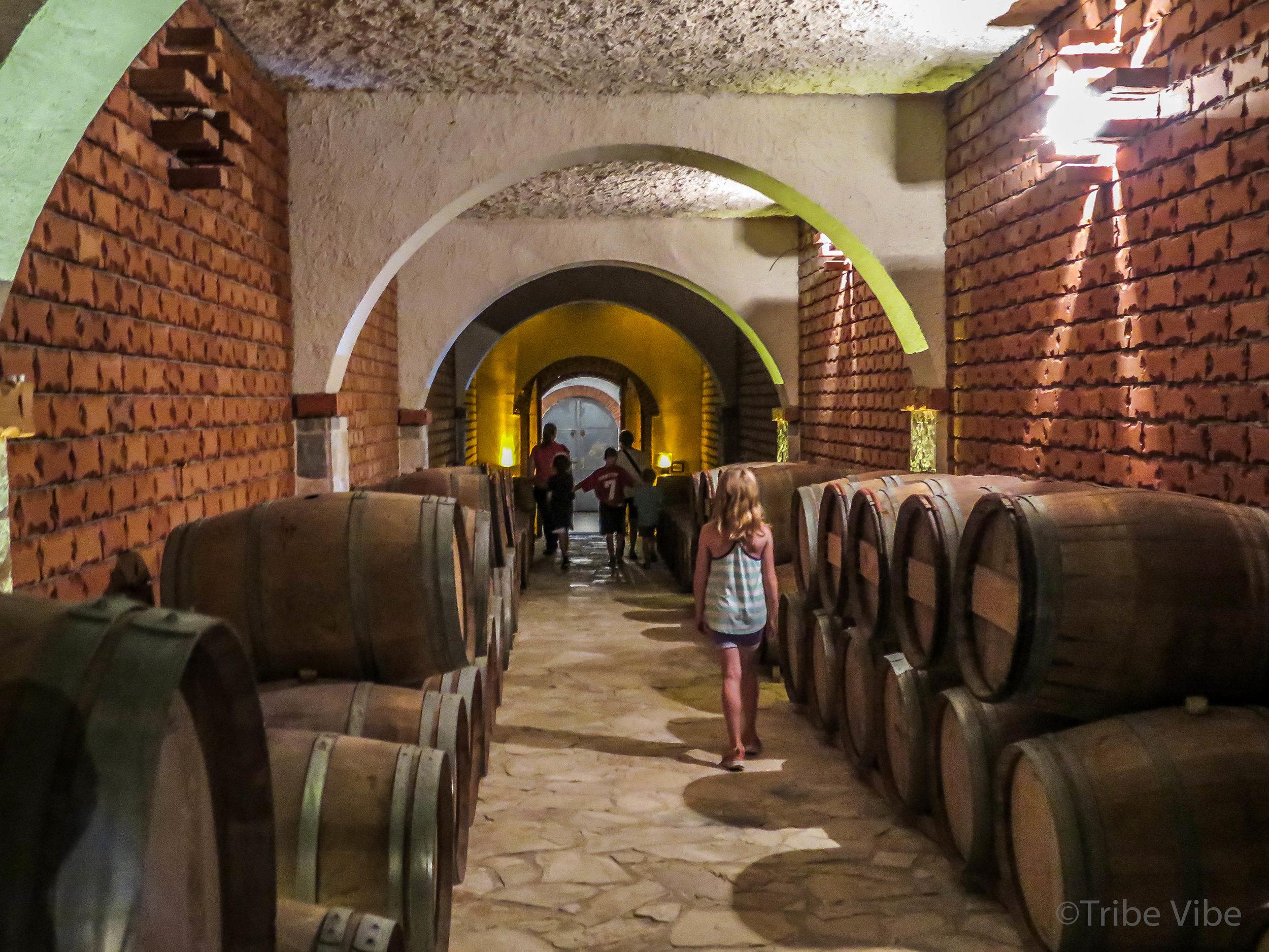 Croatian vineyards22.jpg