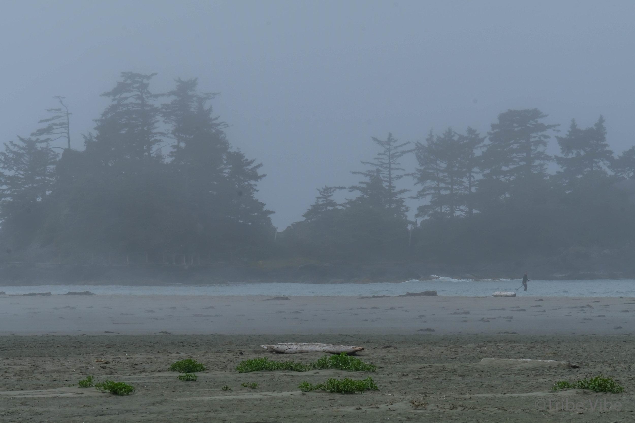 tofino chesterman beach44.jpg
