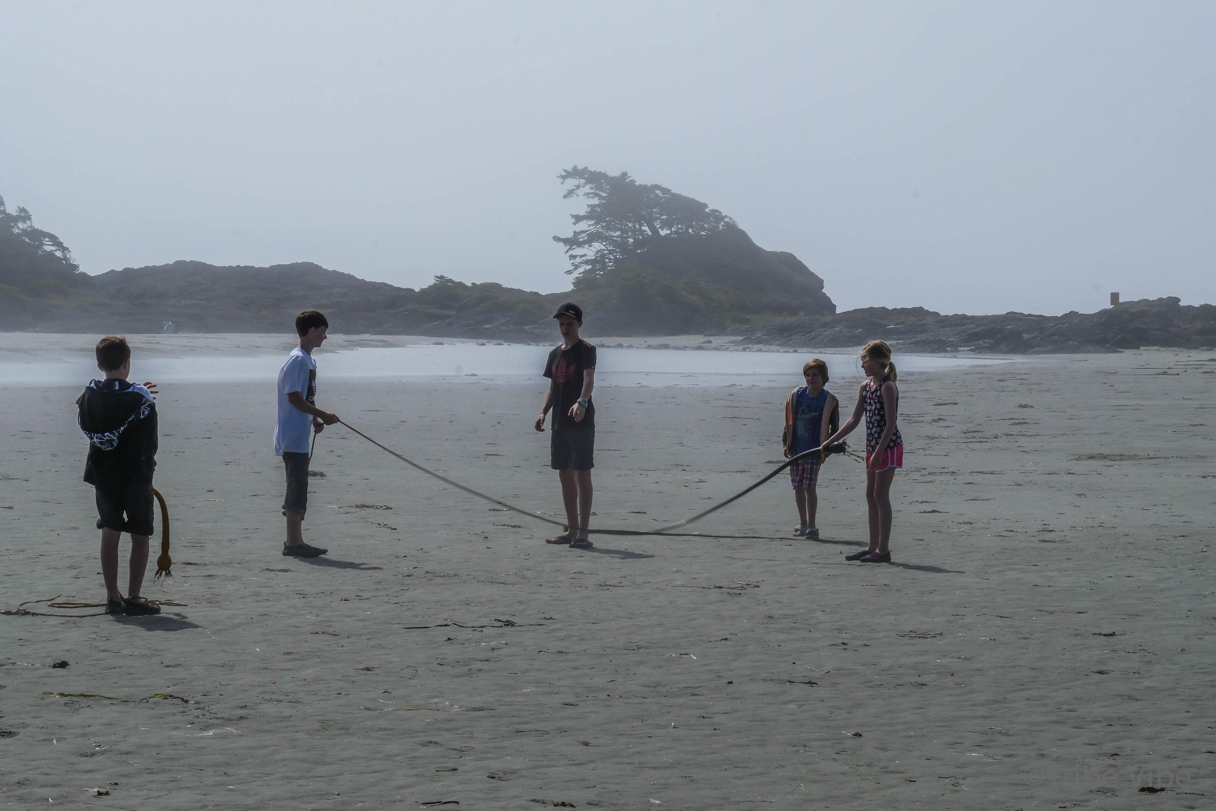 tofino chesterman beach113.jpg