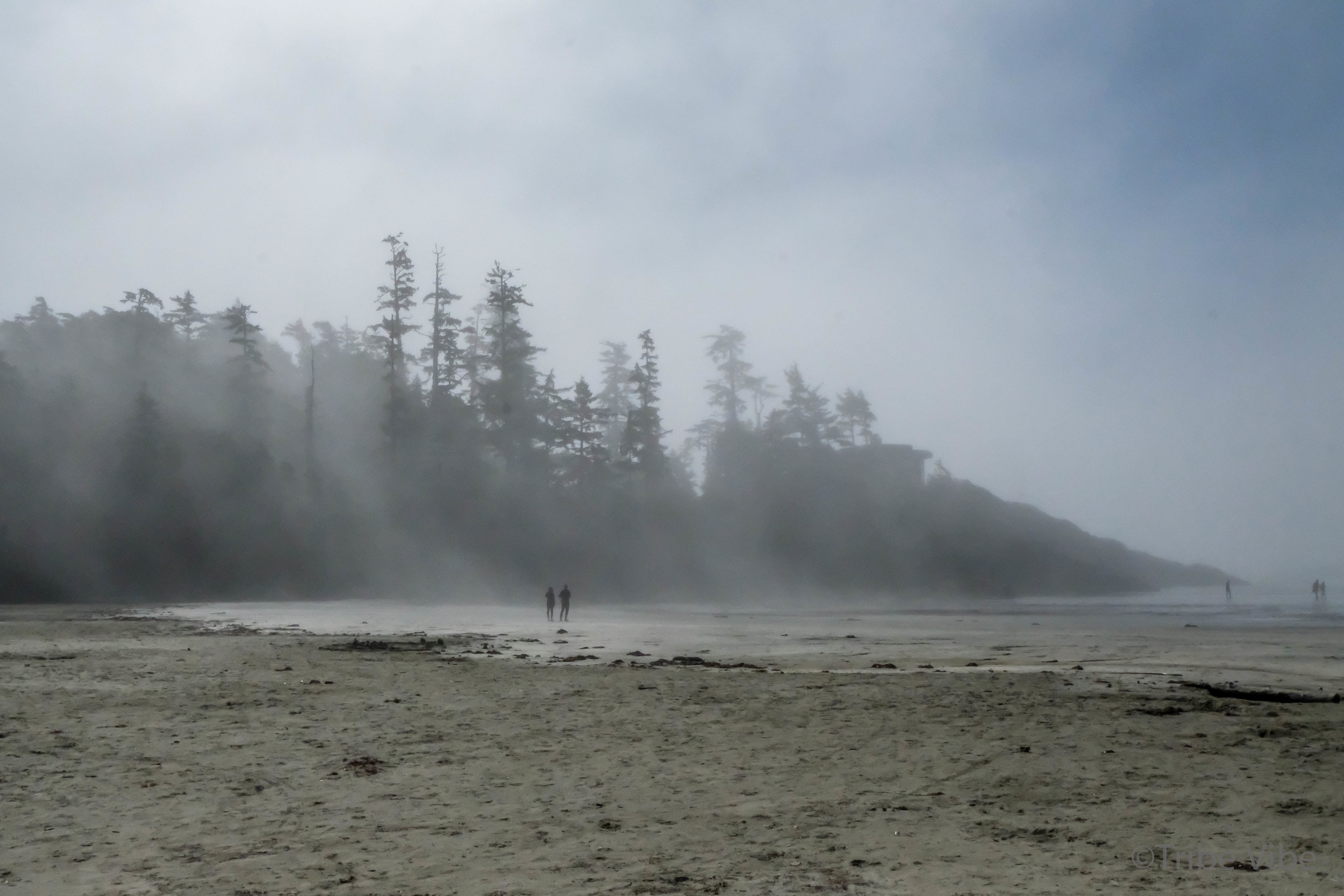 tofino, long beach.jpg