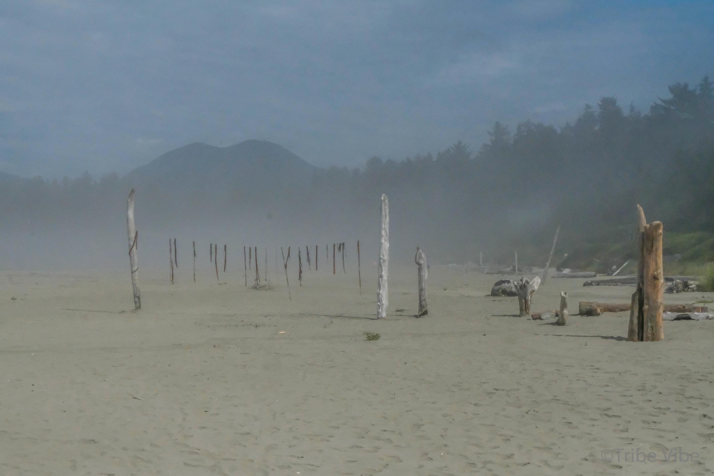 tofino, long beach10.jpg
