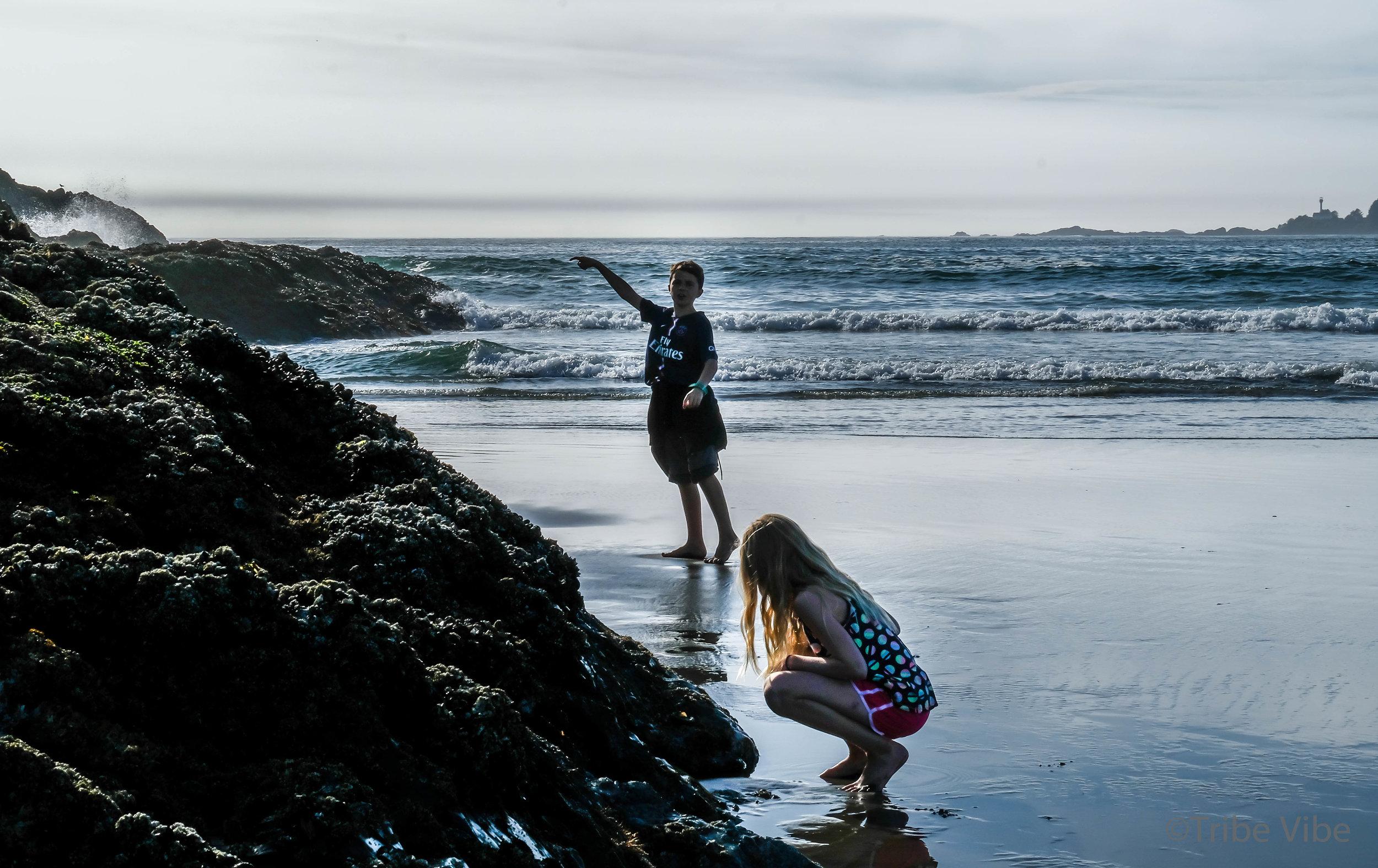 tofino surfing cox bay.53.jpg