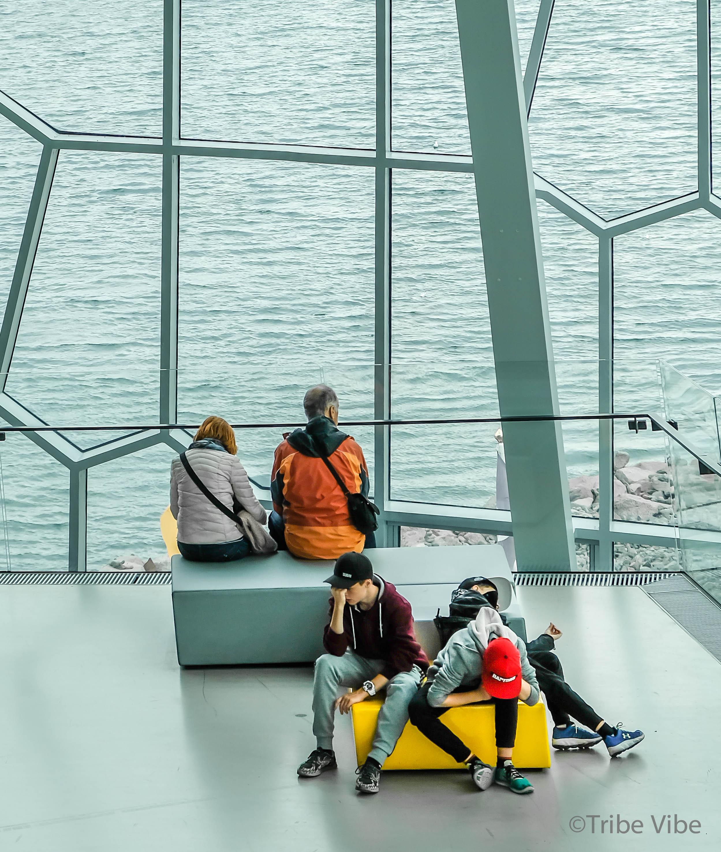 The boys holding in their excitement of the impressive architecture of Harpa