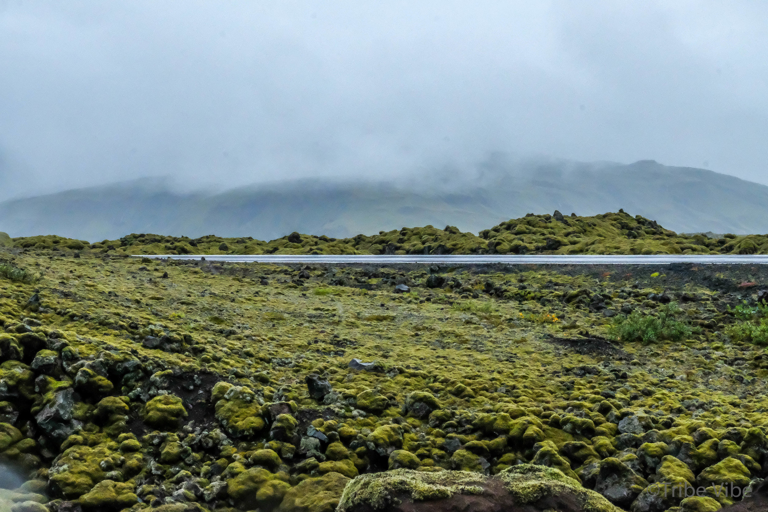 Road leading through Eldhraun Lava Fields