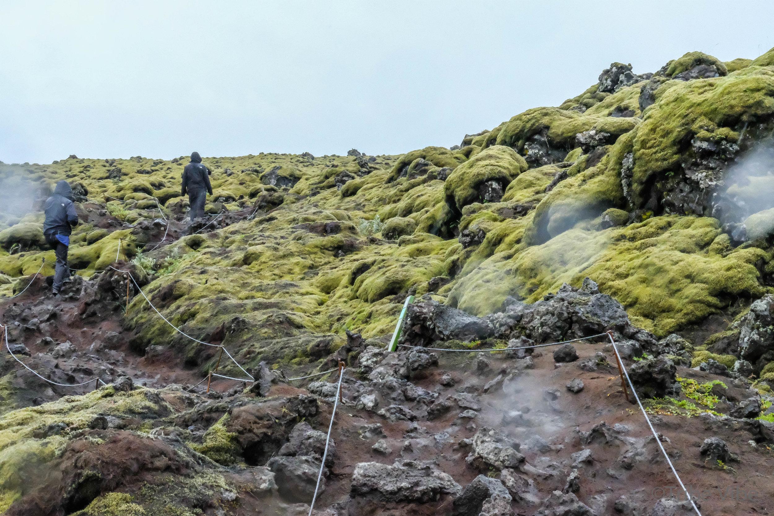 Eldhraun lava field 12.jpg