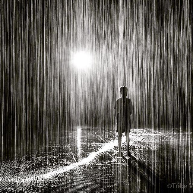 Beating the #summerheat in Dubai at the Sharjah Rain Room. Very cool art installation combining #art and #technology The kids loved it, the adults loved it. How else are you beating the heat in Dubai?