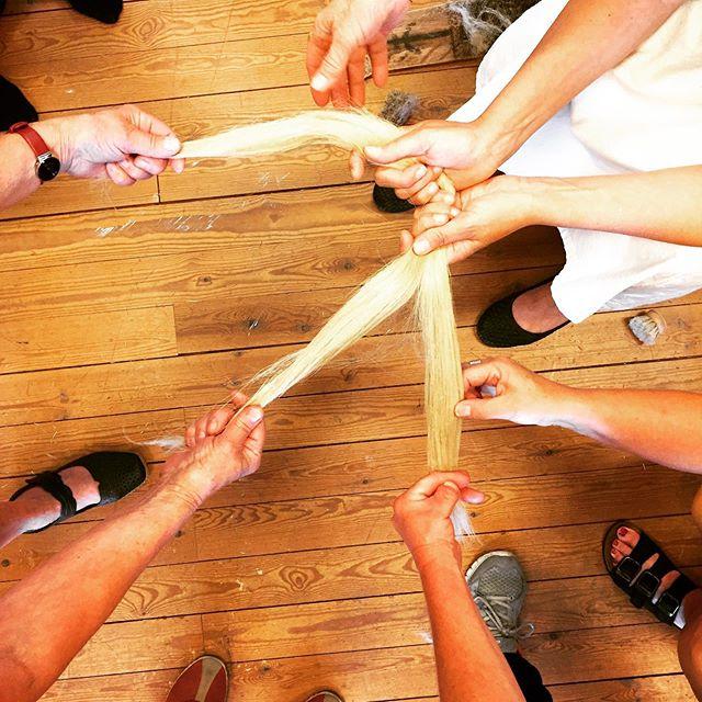 Følelsen av børstet lin! 💛🌾#linberedning #linspinning #håndspunnet #flax #preparingtheflax #handspun
