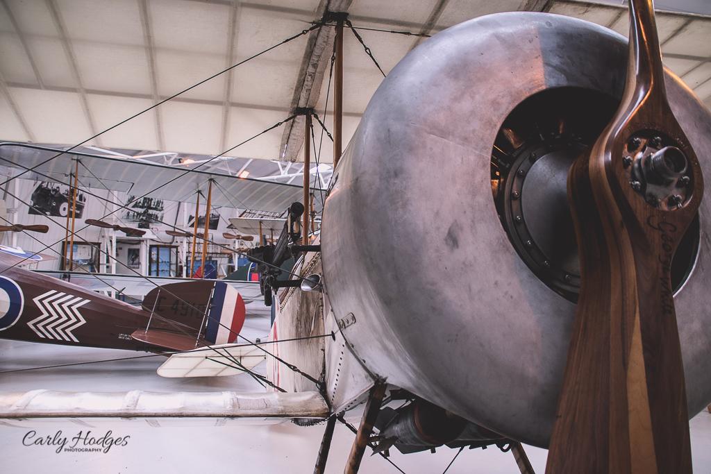 Shuttleworth-8.jpg